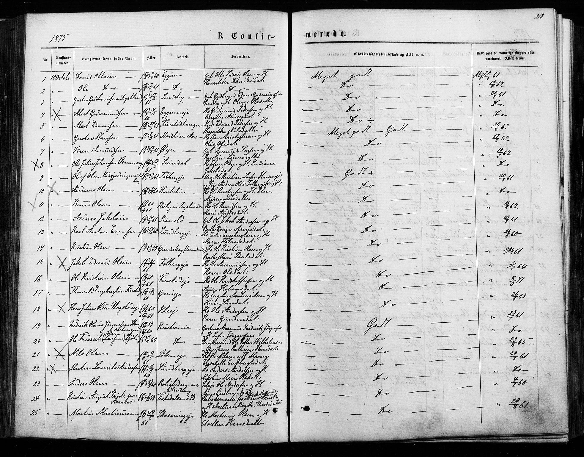 SAO, Nes prestekontor Kirkebøker, F/Fa/L0009: Ministerialbok nr. I 9, 1875-1882, s. 218