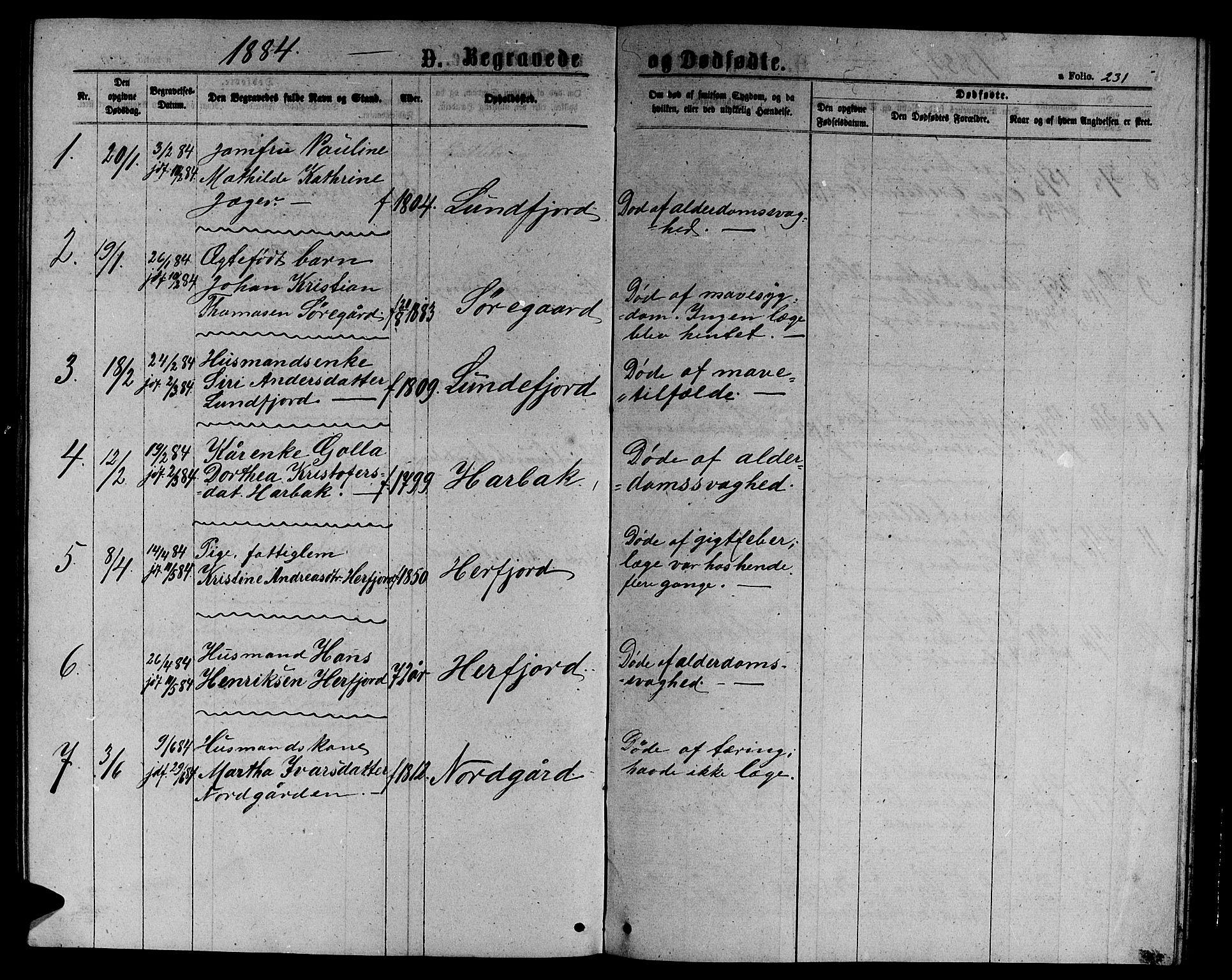 SAT, Ministerialprotokoller, klokkerbøker og fødselsregistre - Sør-Trøndelag, 656/L0695: Klokkerbok nr. 656C01, 1867-1889, s. 231