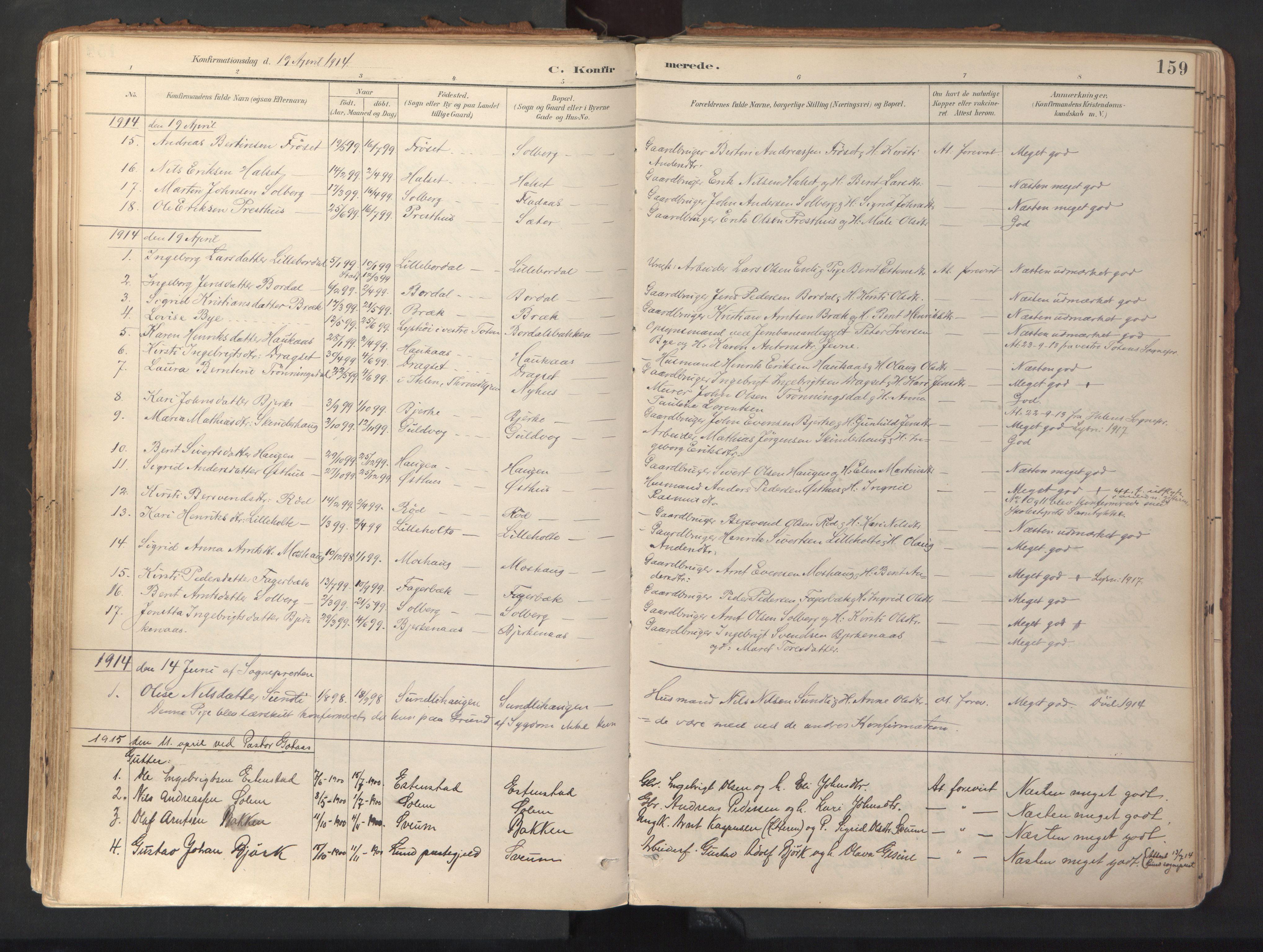 SAT, Ministerialprotokoller, klokkerbøker og fødselsregistre - Sør-Trøndelag, 689/L1041: Ministerialbok nr. 689A06, 1891-1923, s. 159