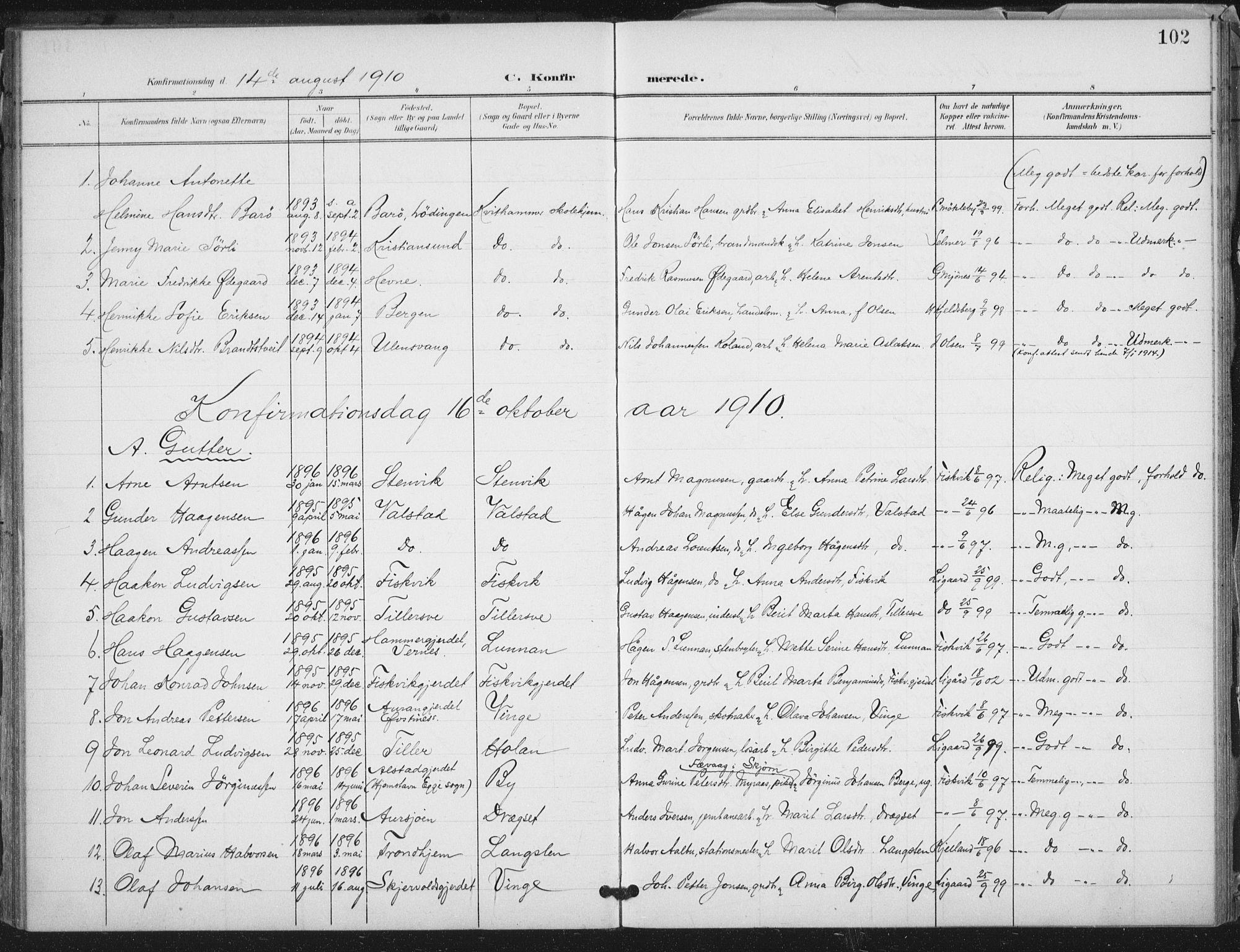 SAT, Ministerialprotokoller, klokkerbøker og fødselsregistre - Nord-Trøndelag, 712/L0101: Ministerialbok nr. 712A02, 1901-1916, s. 102