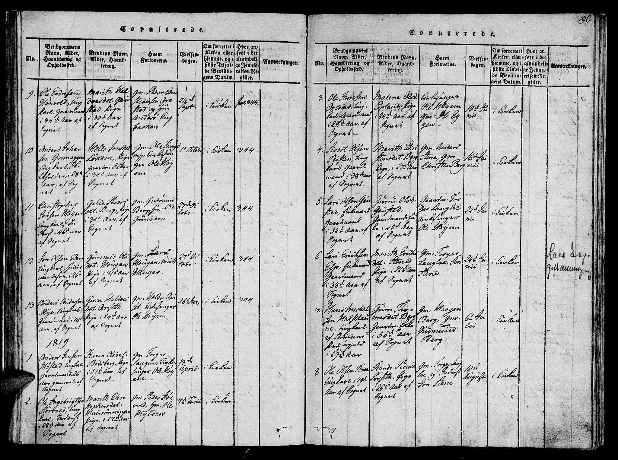 SAT, Ministerialprotokoller, klokkerbøker og fødselsregistre - Sør-Trøndelag, 612/L0372: Ministerialbok nr. 612A06 /1, 1816-1828, s. 196