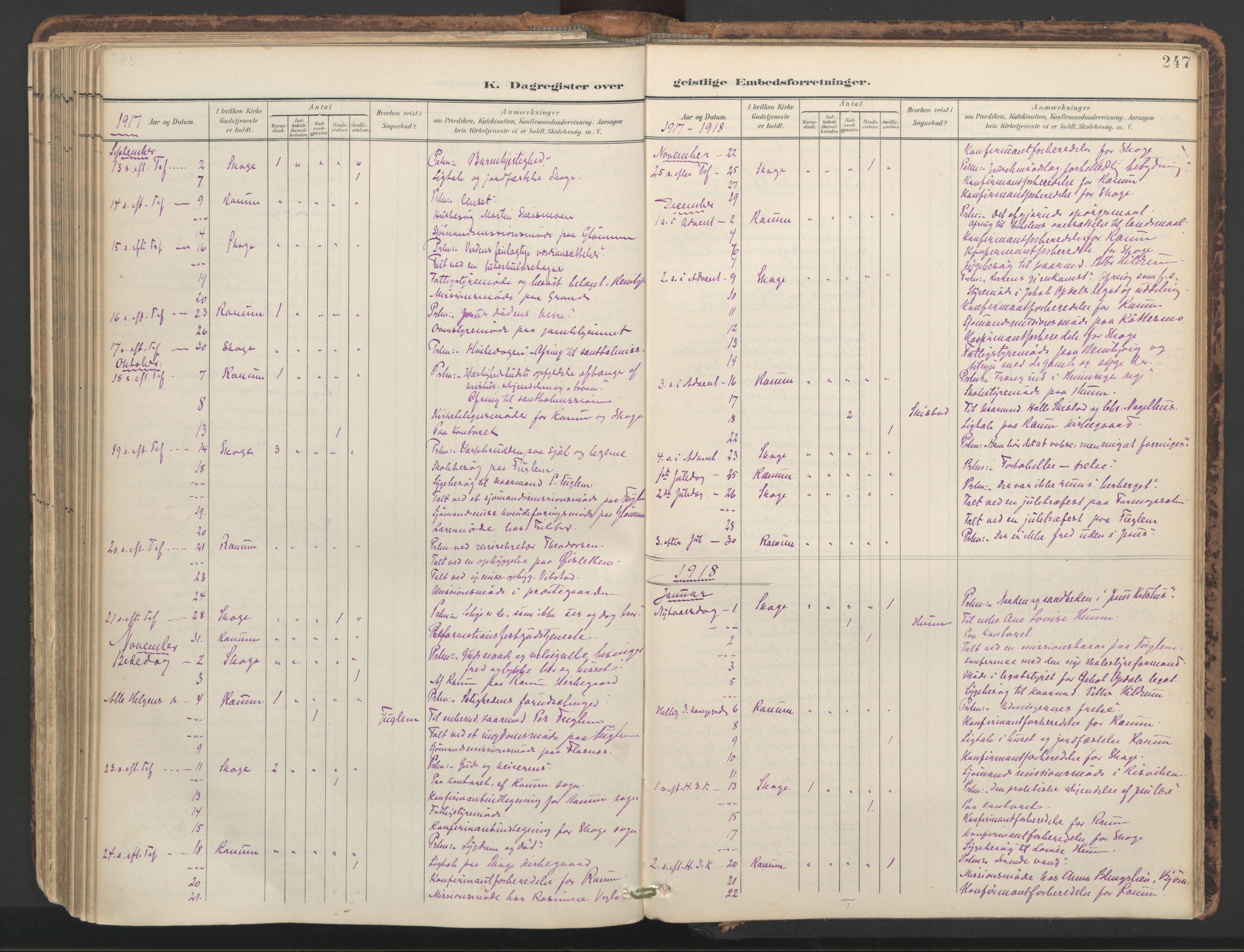 SAT, Ministerialprotokoller, klokkerbøker og fødselsregistre - Nord-Trøndelag, 764/L0556: Ministerialbok nr. 764A11, 1897-1924, s. 247