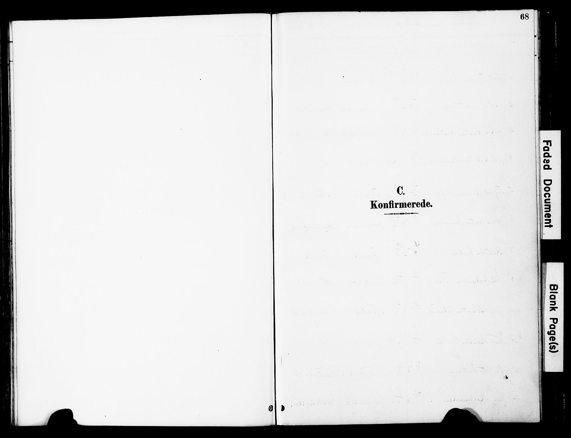 SAT, Ministerialprotokoller, klokkerbøker og fødselsregistre - Nord-Trøndelag, 741/L0396: Ministerialbok nr. 741A10, 1889-1901, s. 68