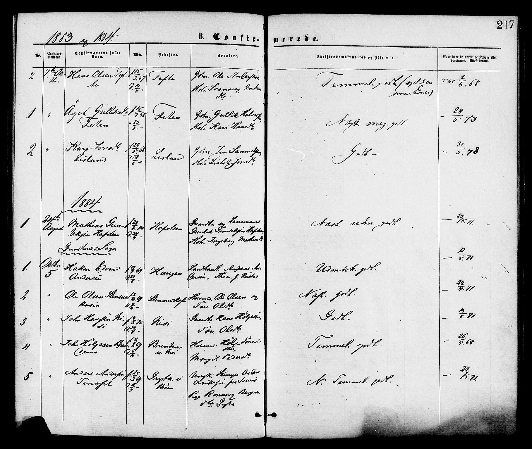 SAKO, Gransherad kirkebøker, F/Fa/L0004: Ministerialbok nr. I 4, 1871-1886, s. 217