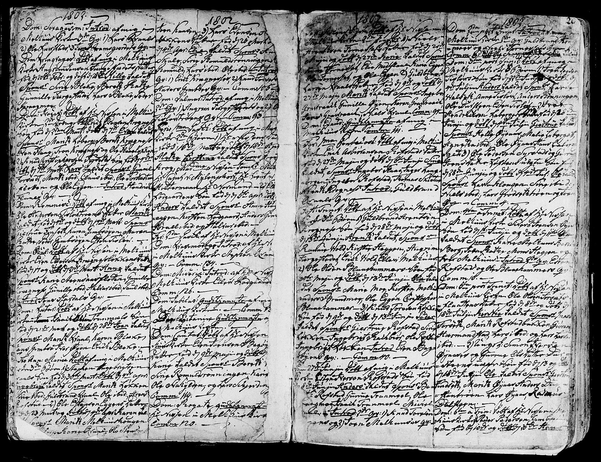 SAT, Ministerialprotokoller, klokkerbøker og fødselsregistre - Sør-Trøndelag, 691/L1061: Ministerialbok nr. 691A02 /1, 1768-1815, s. 20