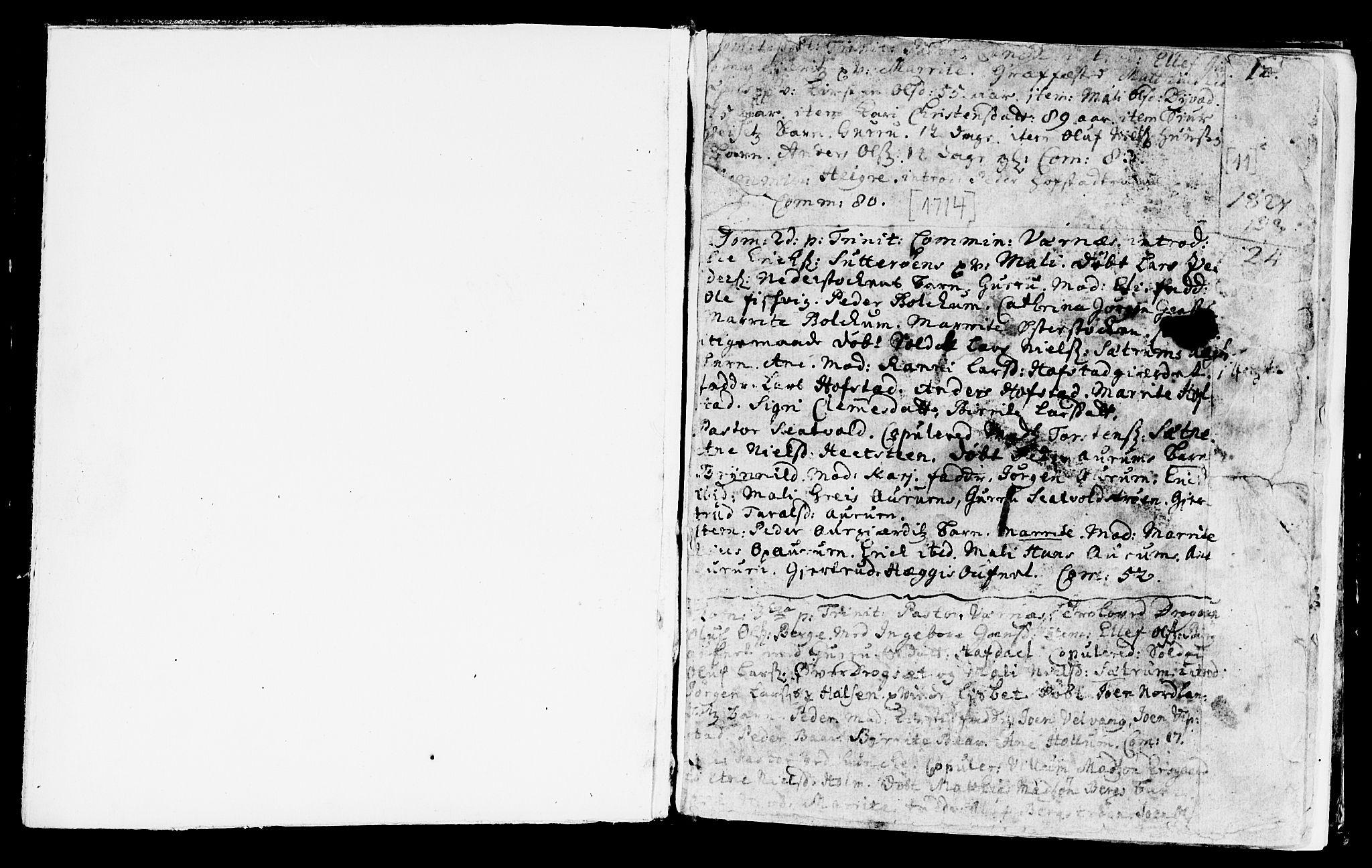 SAT, Ministerialprotokoller, klokkerbøker og fødselsregistre - Nord-Trøndelag, 709/L0054: Ministerialbok nr. 709A02, 1714-1738, s. 11
