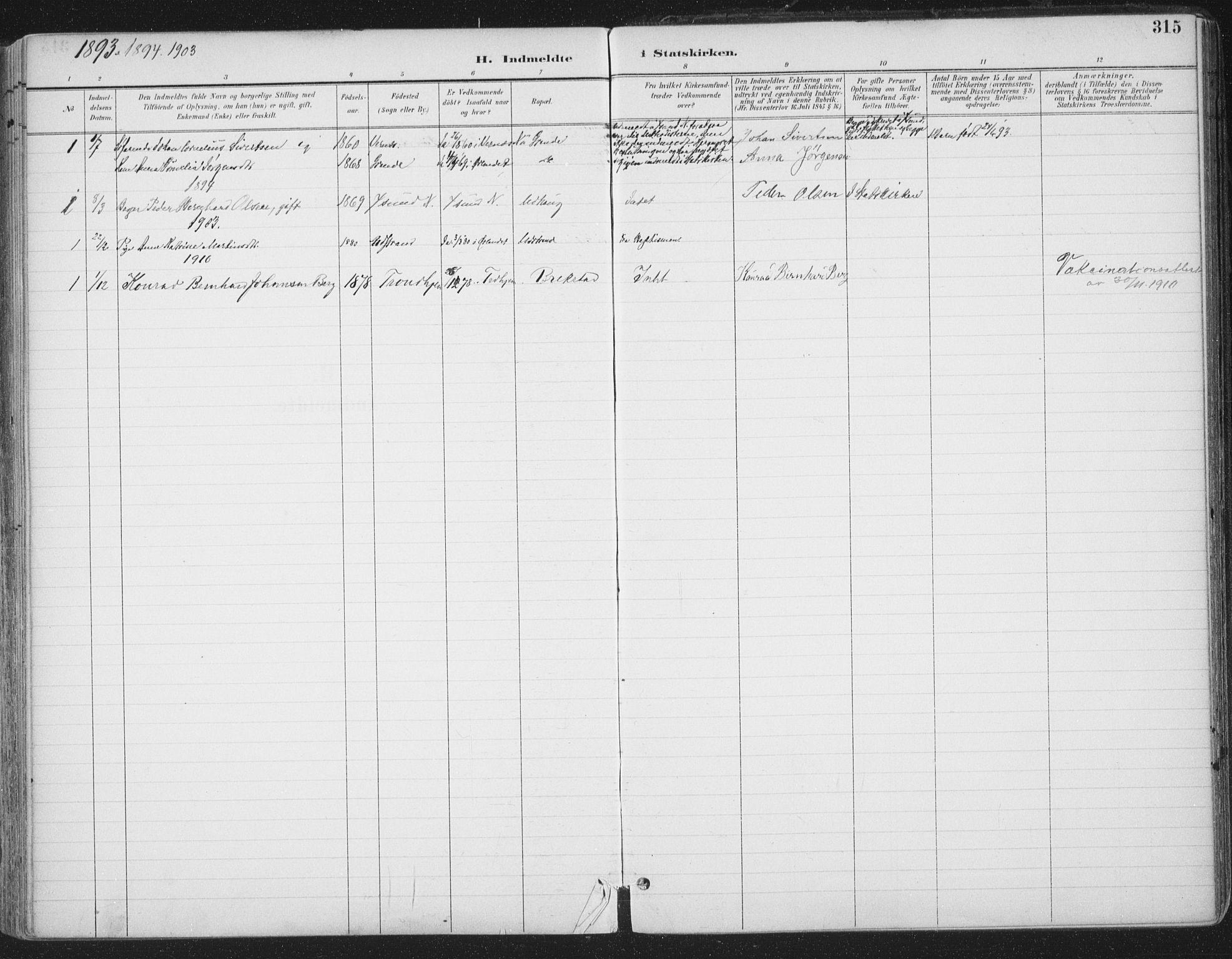 SAT, Ministerialprotokoller, klokkerbøker og fødselsregistre - Sør-Trøndelag, 659/L0743: Ministerialbok nr. 659A13, 1893-1910, s. 315
