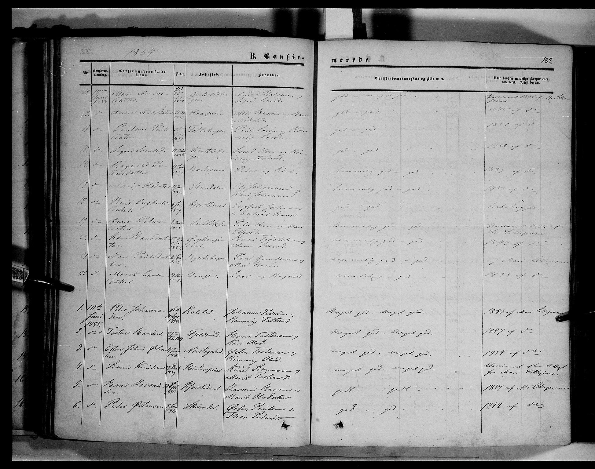 SAH, Sør-Fron prestekontor, H/Ha/Haa/L0001: Ministerialbok nr. 1, 1849-1863, s. 183