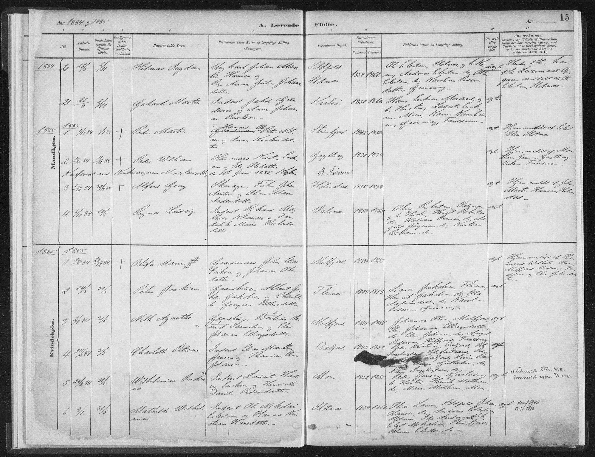 SAT, Ministerialprotokoller, klokkerbøker og fødselsregistre - Nordland, 890/L1286: Ministerialbok nr. 890A01, 1882-1902, s. 15