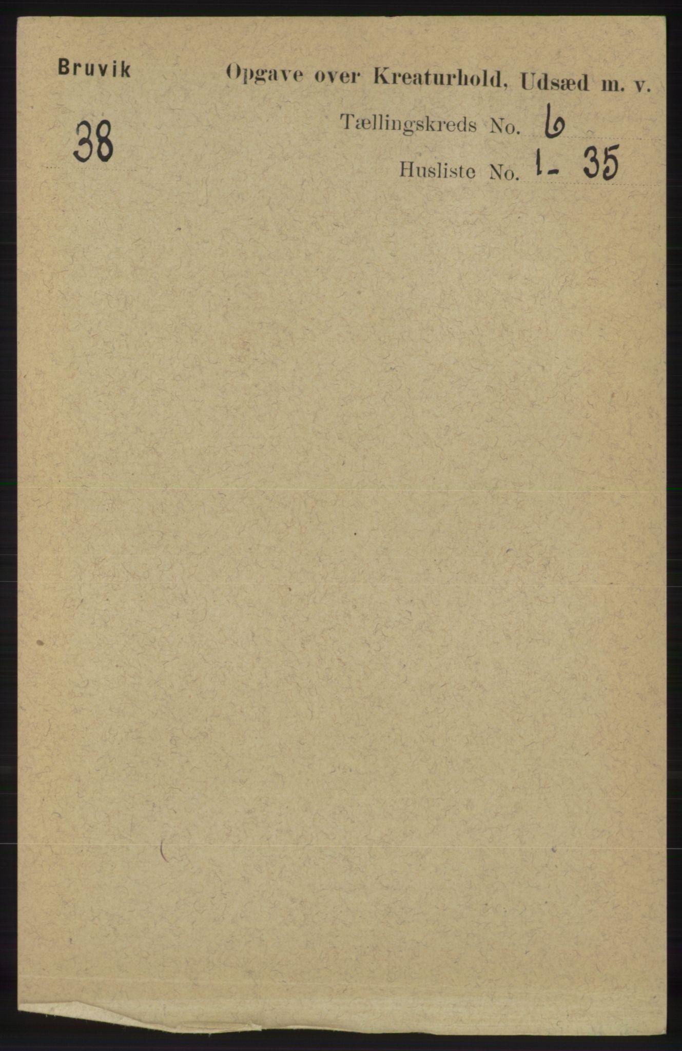 RA, Folketelling 1891 for 1251 Bruvik herred, 1891, s. 4557