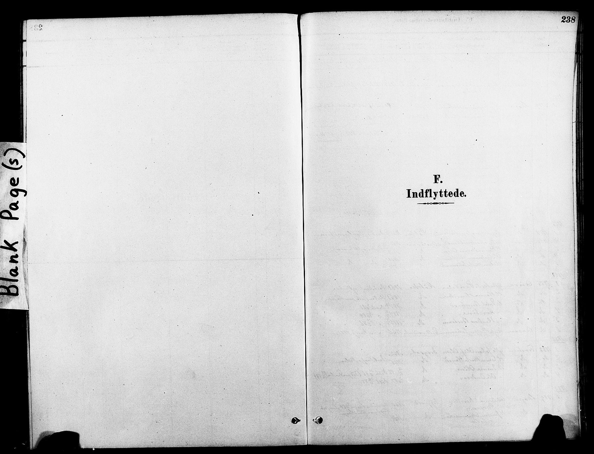 SAT, Ministerialprotokoller, klokkerbøker og fødselsregistre - Nord-Trøndelag, 712/L0100: Ministerialbok nr. 712A01, 1880-1900, s. 238