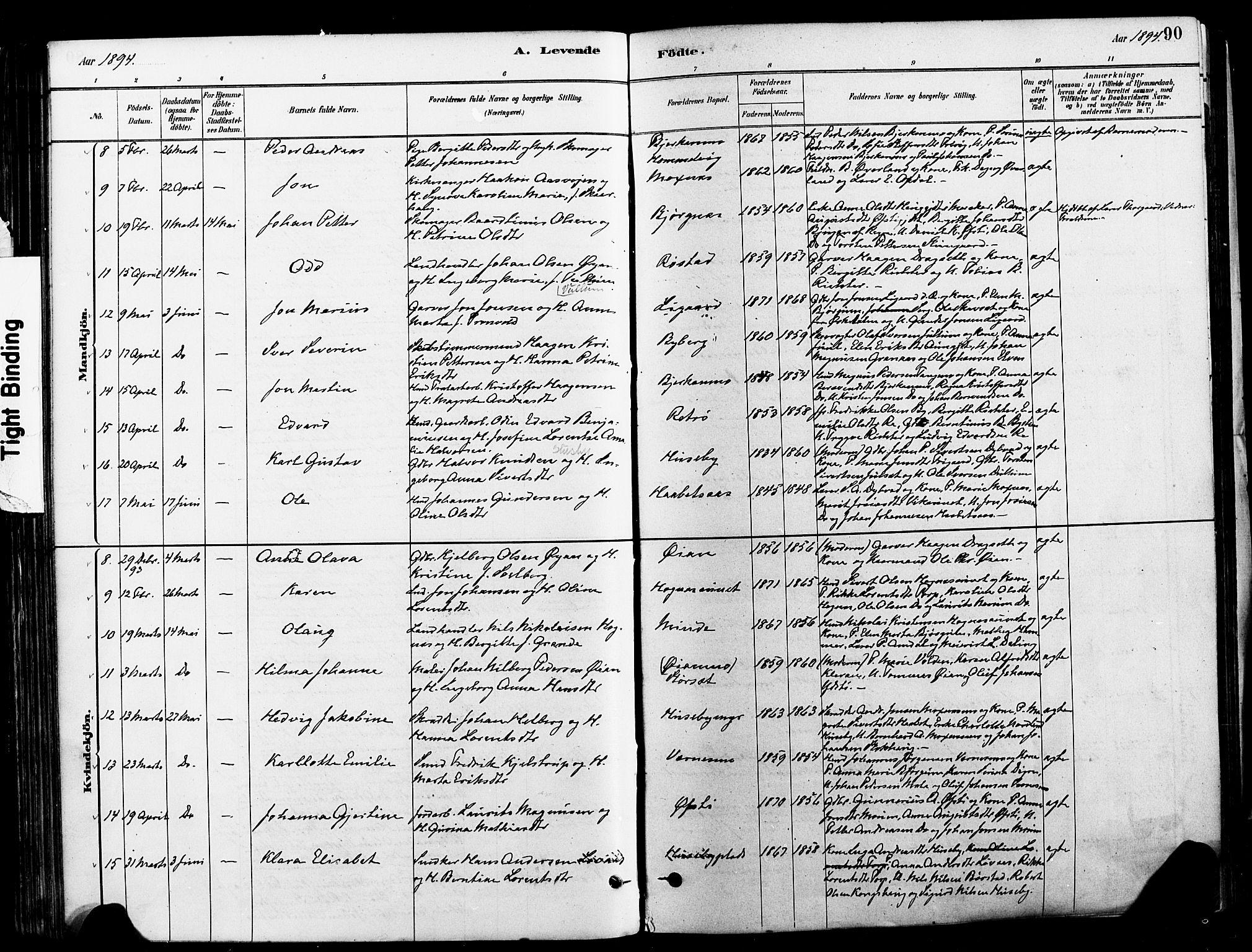 SAT, Ministerialprotokoller, klokkerbøker og fødselsregistre - Nord-Trøndelag, 709/L0077: Ministerialbok nr. 709A17, 1880-1895, s. 90