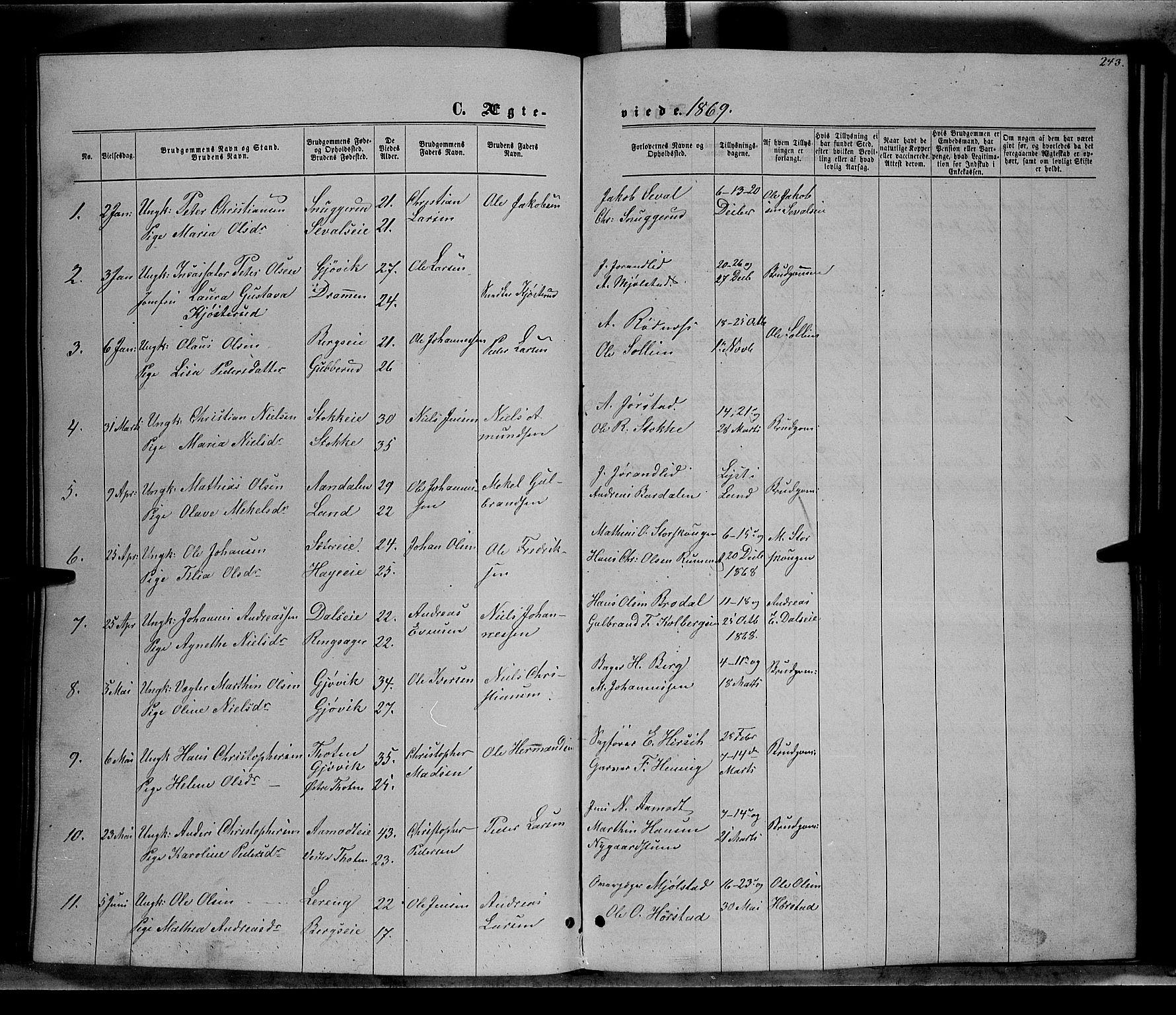 SAH, Vardal prestekontor, H/Ha/Hab/L0006: Klokkerbok nr. 6, 1869-1881, s. 243