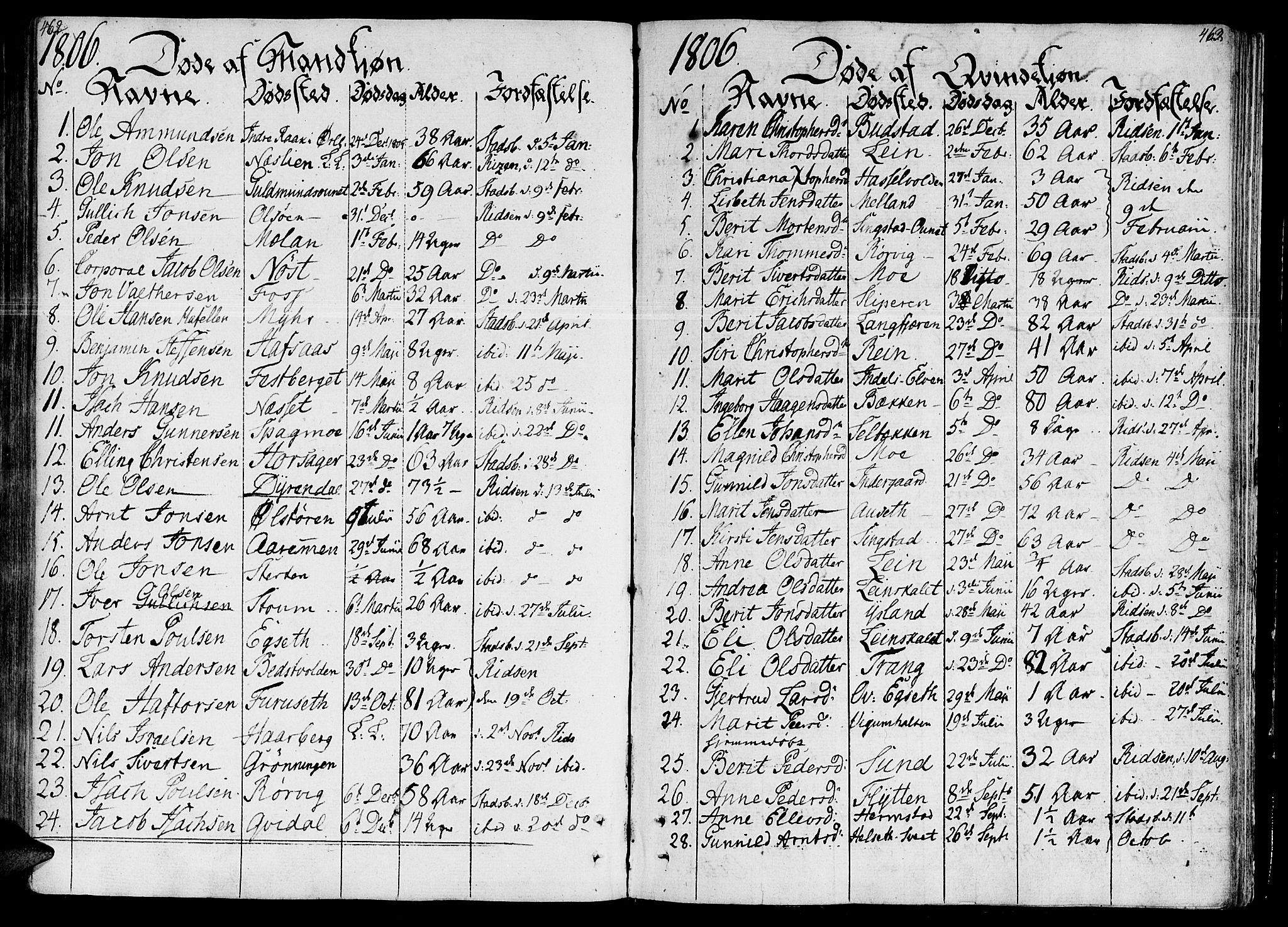 SAT, Ministerialprotokoller, klokkerbøker og fødselsregistre - Sør-Trøndelag, 646/L0607: Ministerialbok nr. 646A05, 1806-1815, s. 462-463
