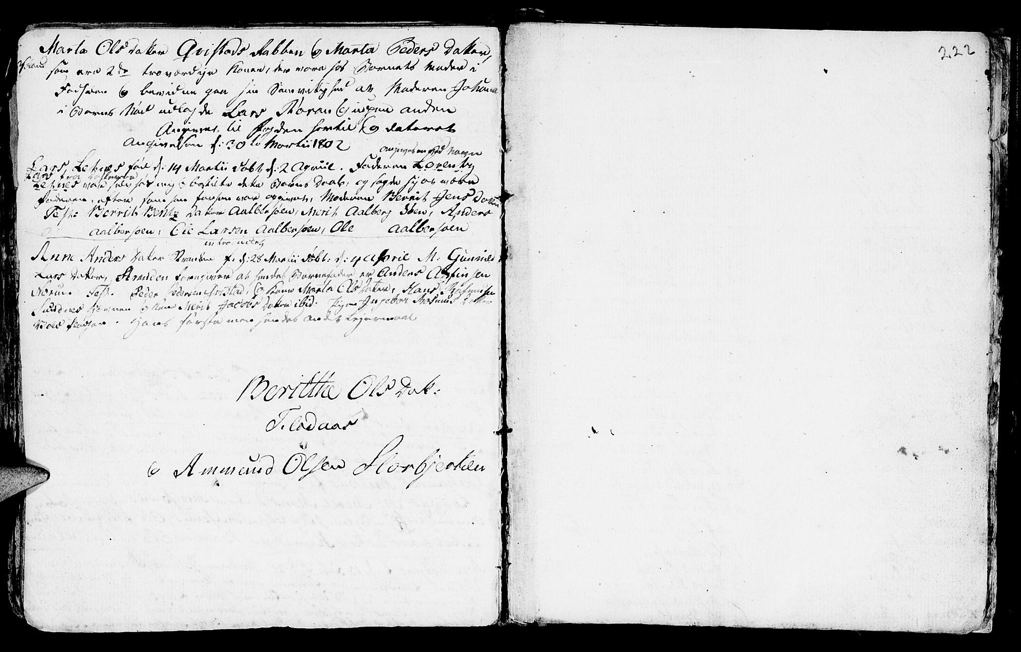 SAT, Ministerialprotokoller, klokkerbøker og fødselsregistre - Nord-Trøndelag, 730/L0273: Ministerialbok nr. 730A02, 1762-1802, s. 222