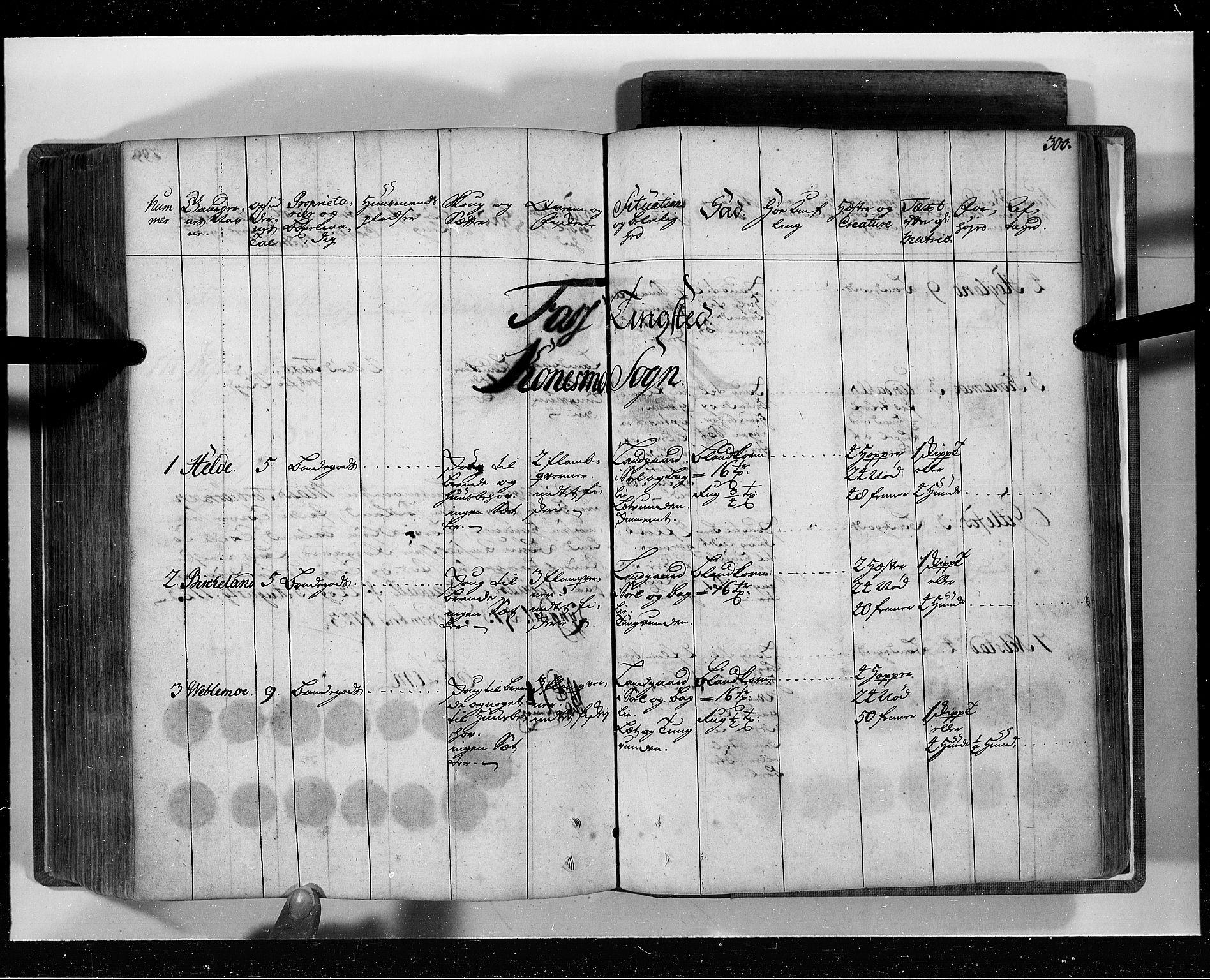RA, Rentekammeret inntil 1814, Realistisk ordnet avdeling, N/Nb/Nbf/L0129: Lista eksaminasjonsprotokoll, 1723, s. 299b-300a