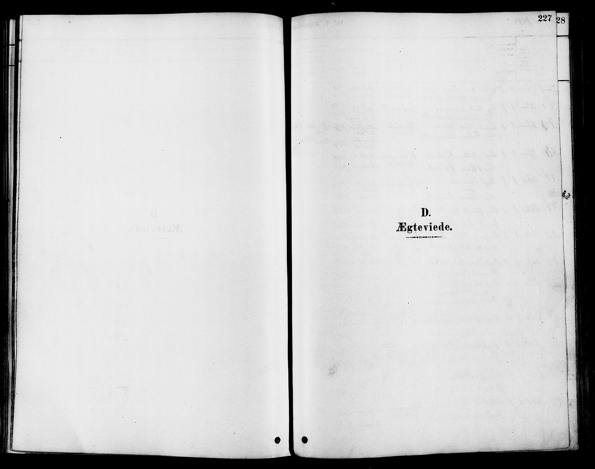 SAH, Vestre Toten prestekontor, Ministerialbok nr. 9, 1878-1894, s. 227