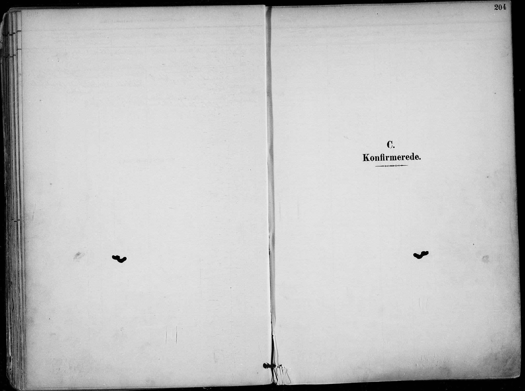 SAKO, Skien kirkebøker, F/Fa/L0010: Ministerialbok nr. 10, 1891-1899, s. 204