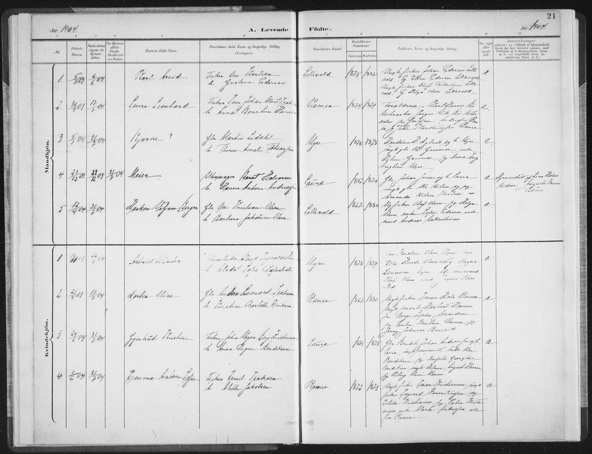 SAT, Ministerialprotokoller, klokkerbøker og fødselsregistre - Nordland, 897/L1400: Ministerialbok nr. 897A07, 1897-1908, s. 21