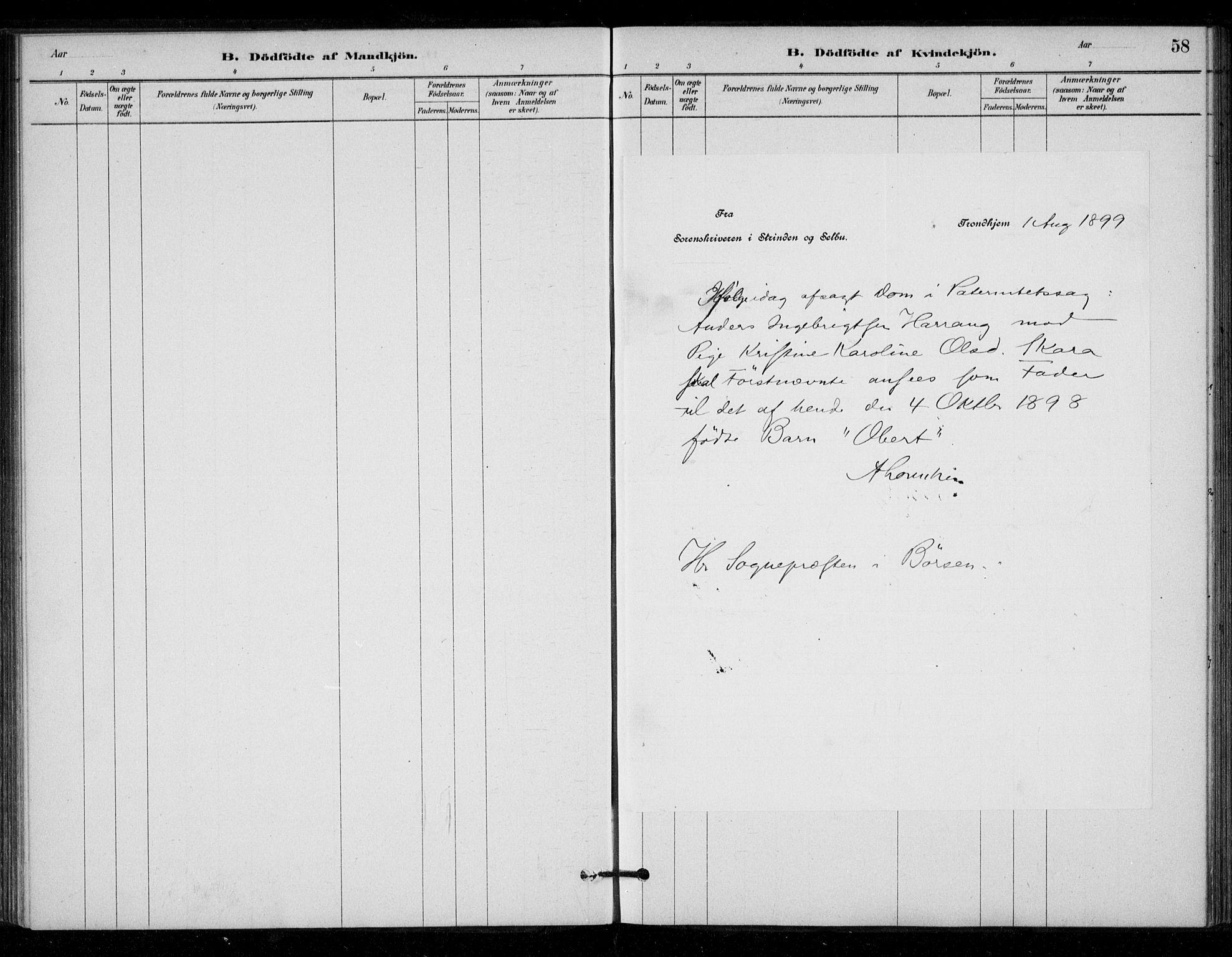 SAT, Ministerialprotokoller, klokkerbøker og fødselsregistre - Sør-Trøndelag, 670/L0836: Ministerialbok nr. 670A01, 1879-1904, s. 58