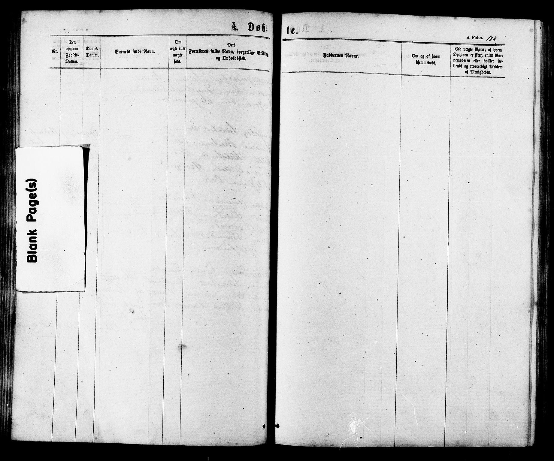 SAT, Ministerialprotokoller, klokkerbøker og fødselsregistre - Sør-Trøndelag, 657/L0706: Ministerialbok nr. 657A07, 1867-1878, s. 184