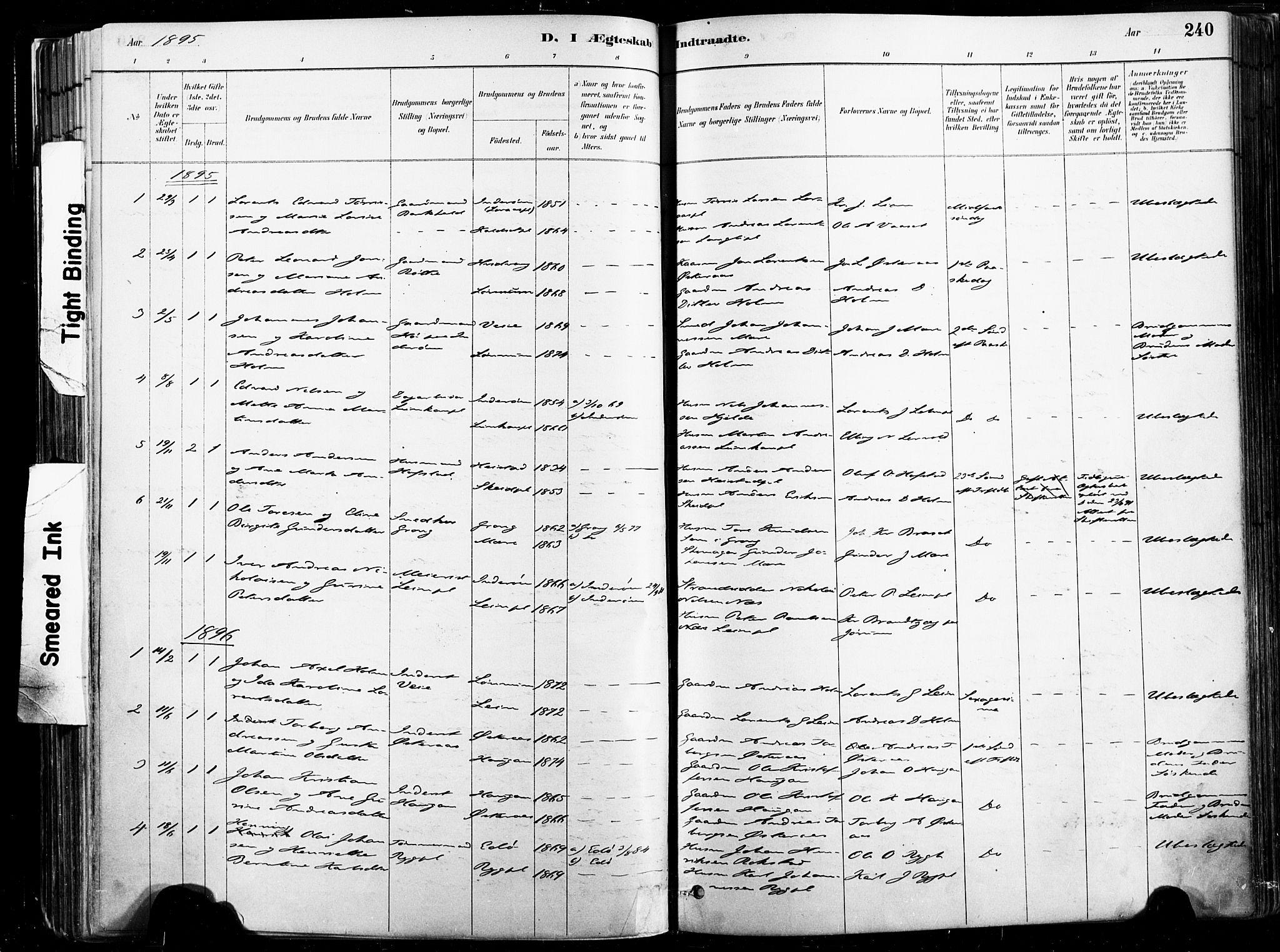 SAT, Ministerialprotokoller, klokkerbøker og fødselsregistre - Nord-Trøndelag, 735/L0351: Ministerialbok nr. 735A10, 1884-1908, s. 240