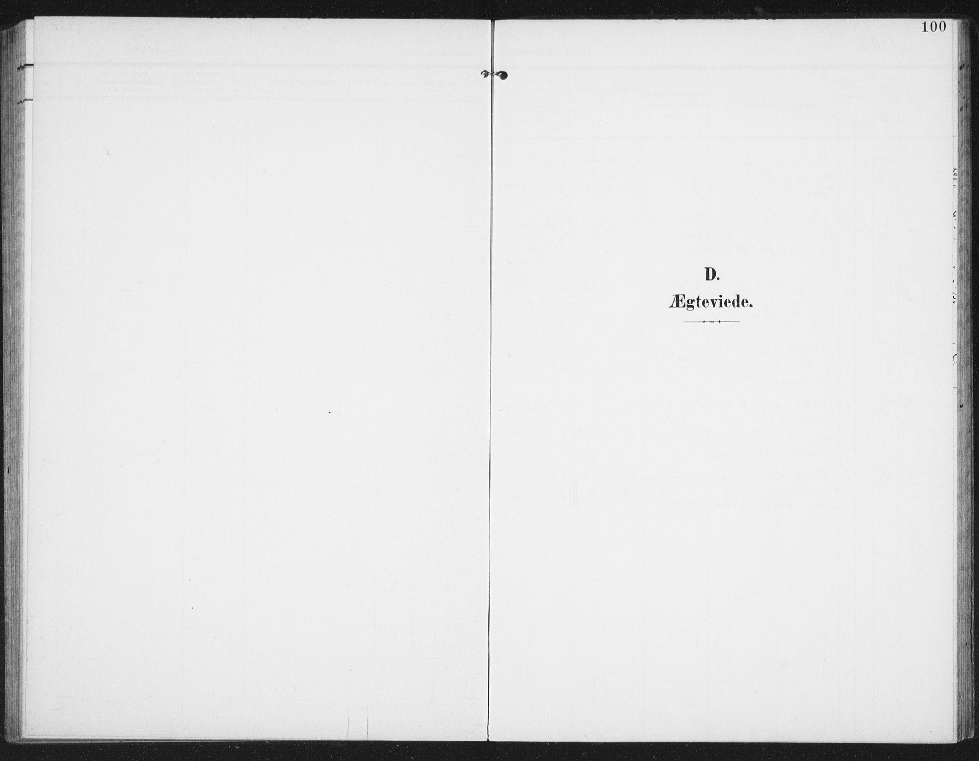 SAT, Ministerialprotokoller, klokkerbøker og fødselsregistre - Nordland, 886/L1221: Ministerialbok nr. 886A03, 1903-1913, s. 100