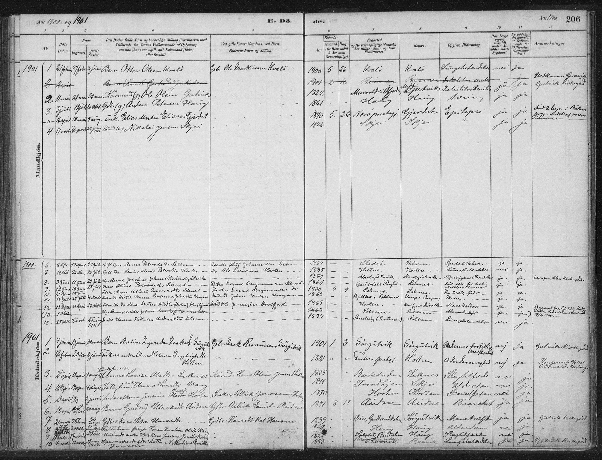 SAT, Ministerialprotokoller, klokkerbøker og fødselsregistre - Nord-Trøndelag, 788/L0697: Ministerialbok nr. 788A04, 1878-1902, s. 206