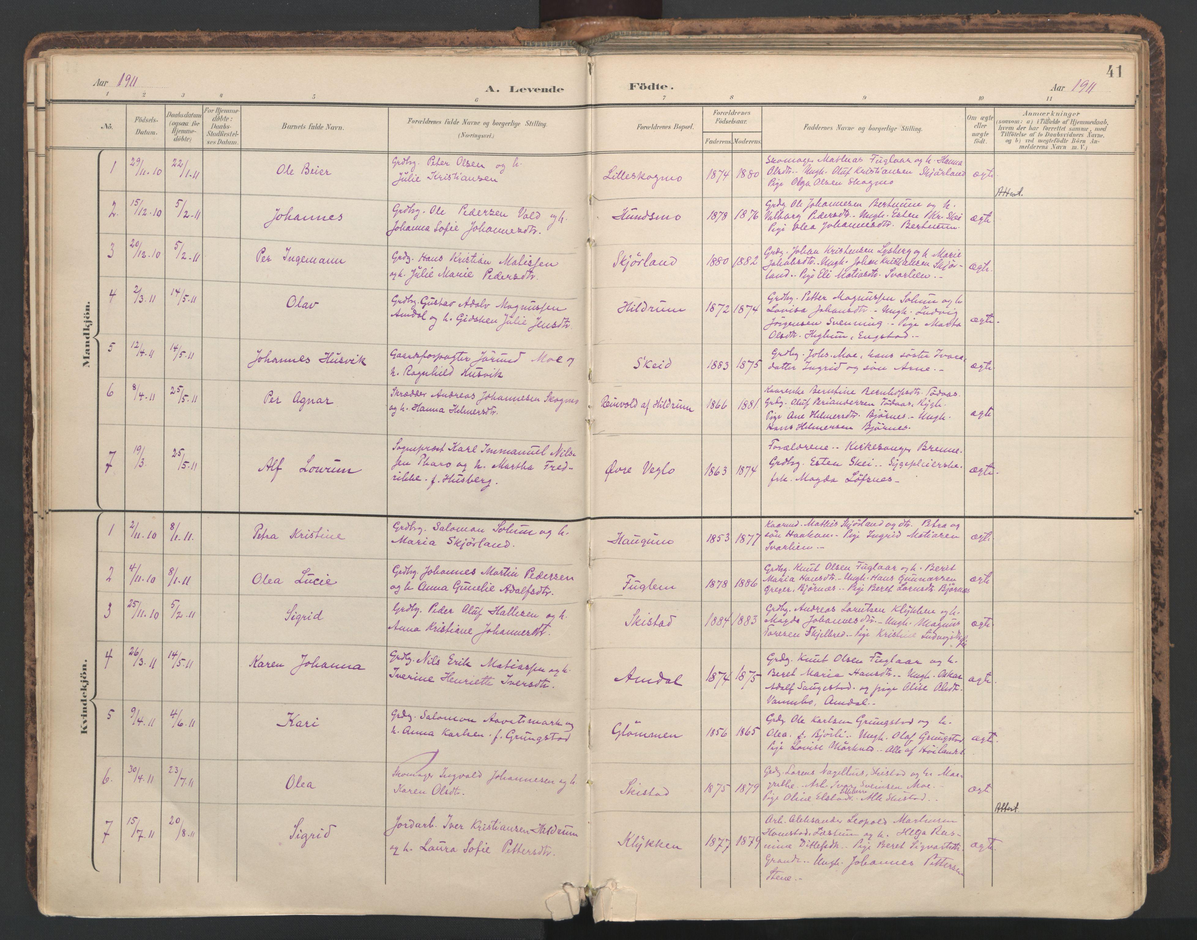 SAT, Ministerialprotokoller, klokkerbøker og fødselsregistre - Nord-Trøndelag, 764/L0556: Ministerialbok nr. 764A11, 1897-1924, s. 41