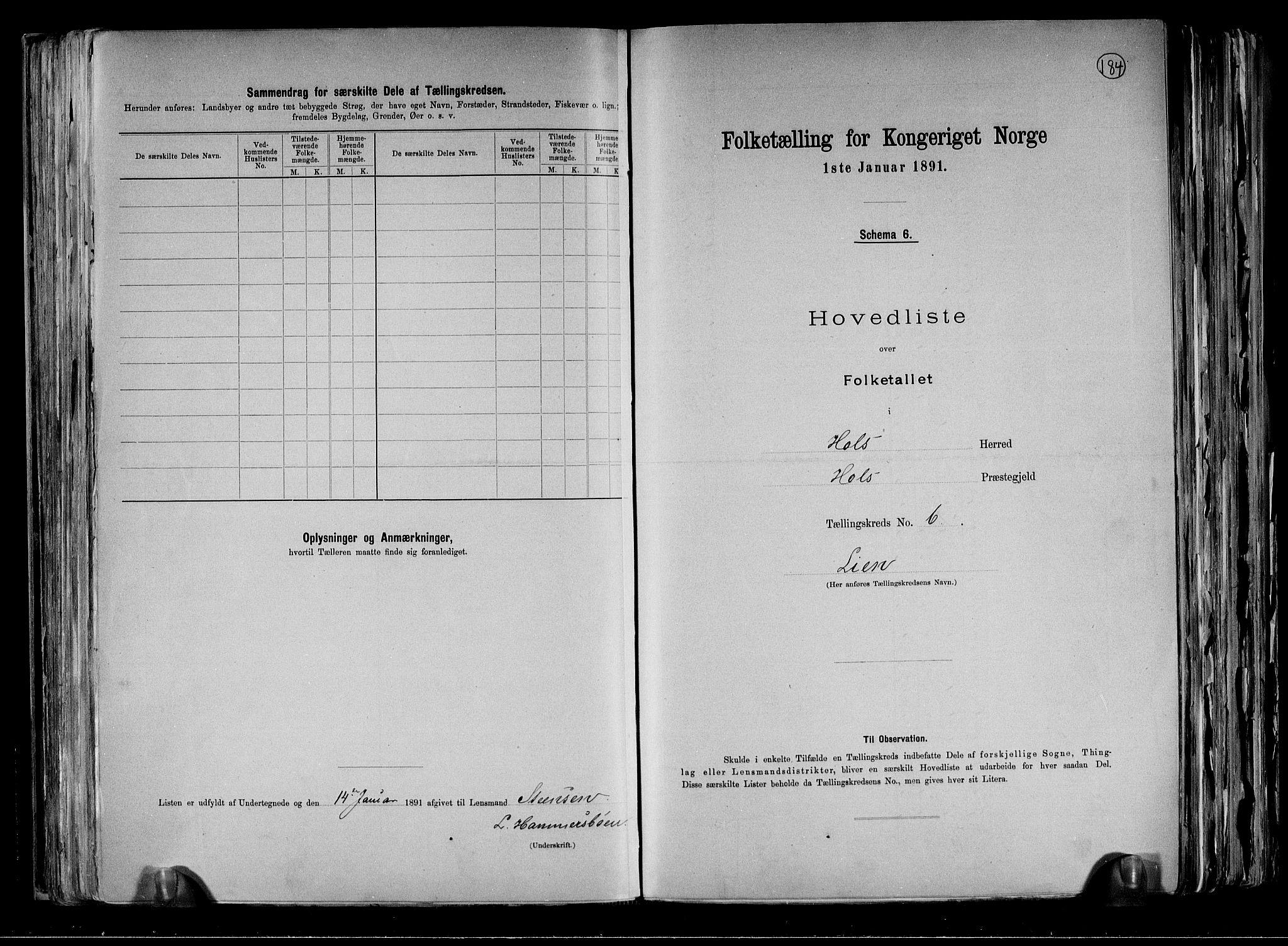 RA, Folketelling 1891 for 0620 Hol herred, 1891, s. 17