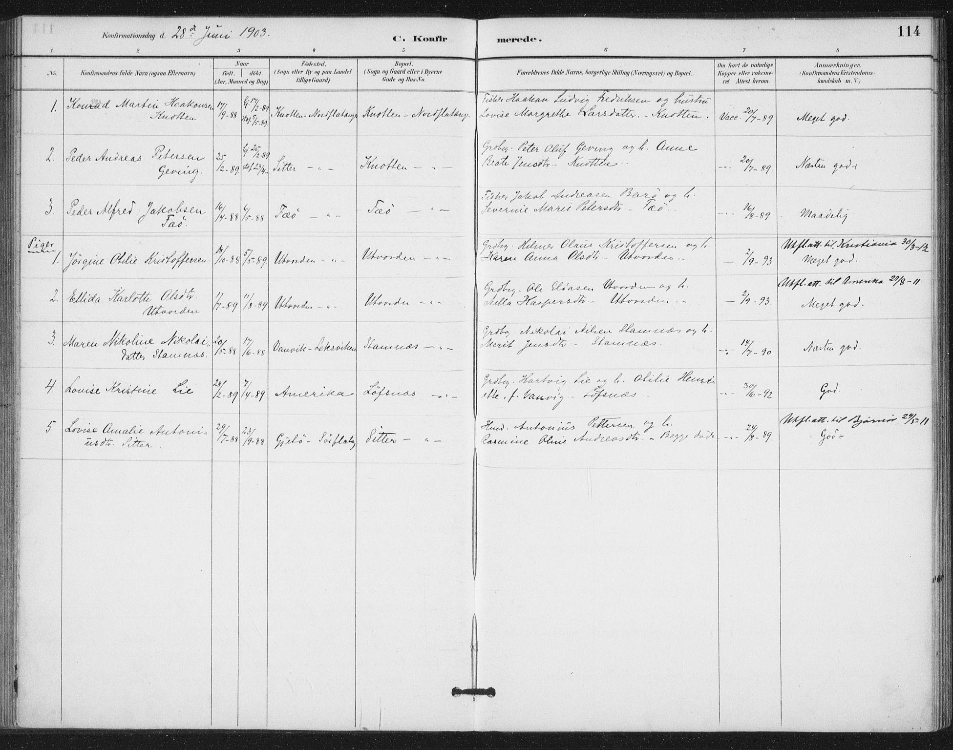 SAT, Ministerialprotokoller, klokkerbøker og fødselsregistre - Nord-Trøndelag, 772/L0603: Ministerialbok nr. 772A01, 1885-1912, s. 114