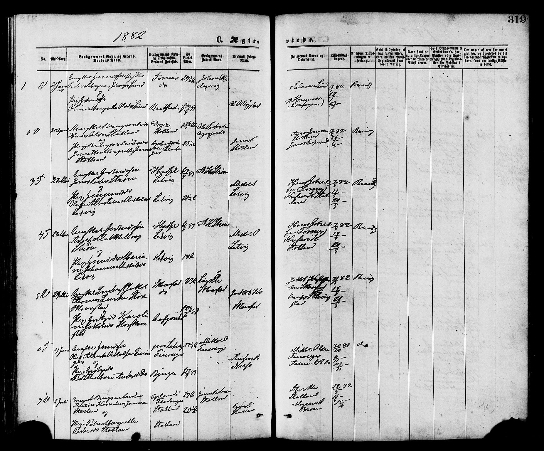 SAT, Ministerialprotokoller, klokkerbøker og fødselsregistre - Nord-Trøndelag, 773/L0616: Ministerialbok nr. 773A07, 1870-1887, s. 319