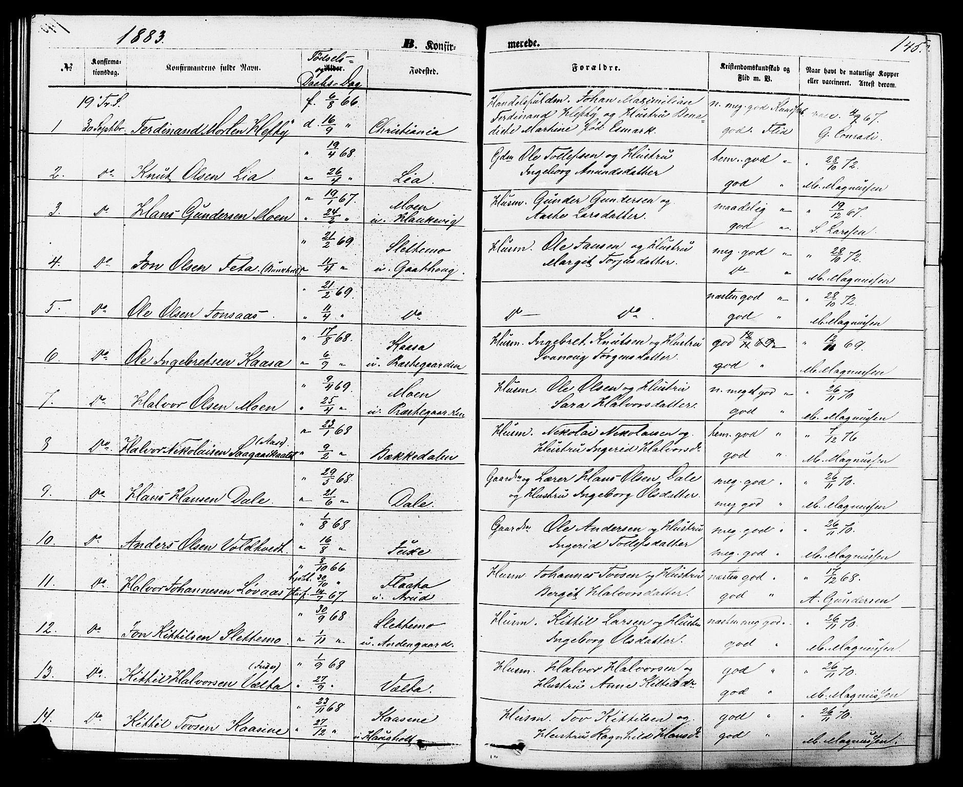 SAKO, Sauherad kirkebøker, F/Fa/L0008: Ministerialbok nr. I 8, 1873-1886, s. 145