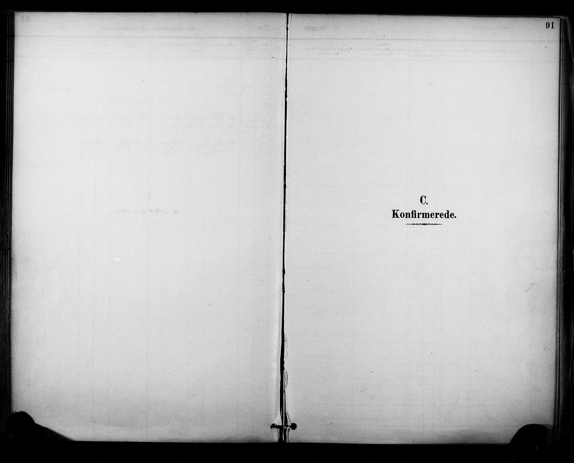 SAKO, Sauherad kirkebøker, F/Fa/L0009: Ministerialbok nr. I 9, 1887-1912, s. 91