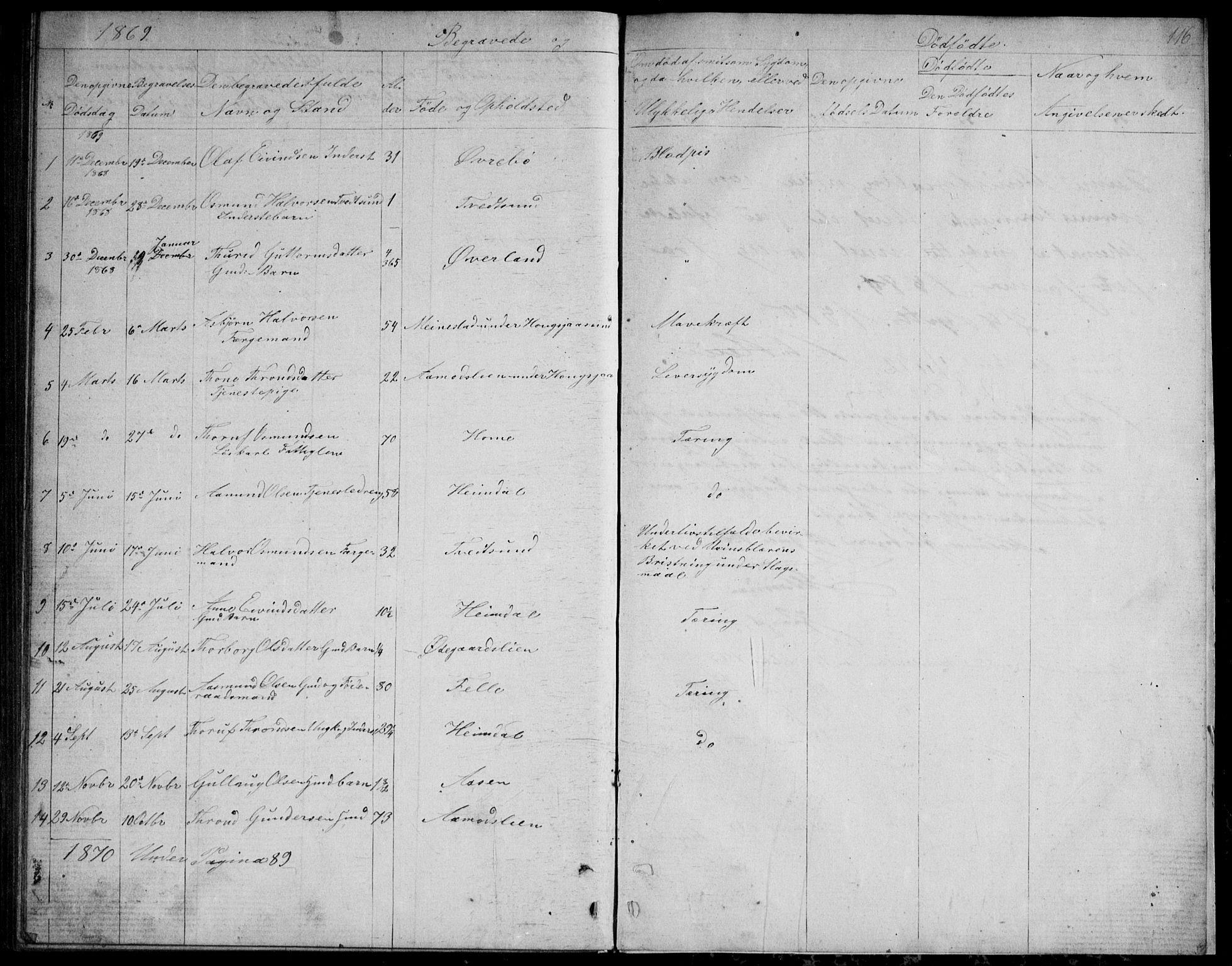SAKO, Nissedal kirkebøker, G/Gb/L0002: Klokkerbok nr. II 2, 1863-1892, s. 116