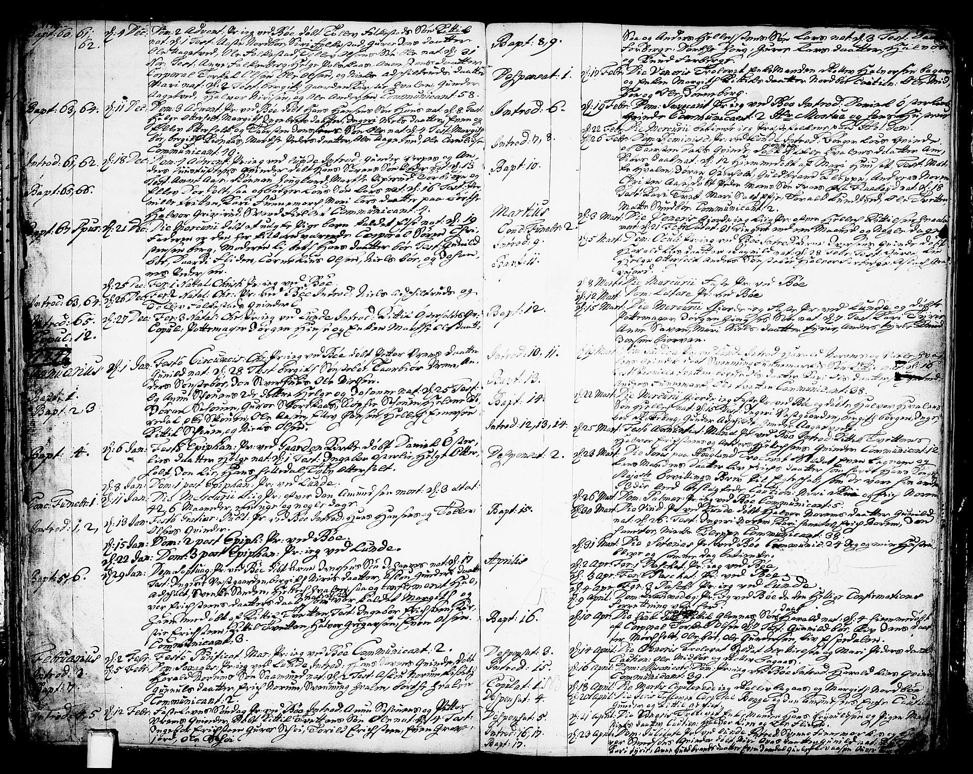 SAKO, Bø kirkebøker, F/Fa/L0003: Ministerialbok nr. 3, 1733-1748, s. 36