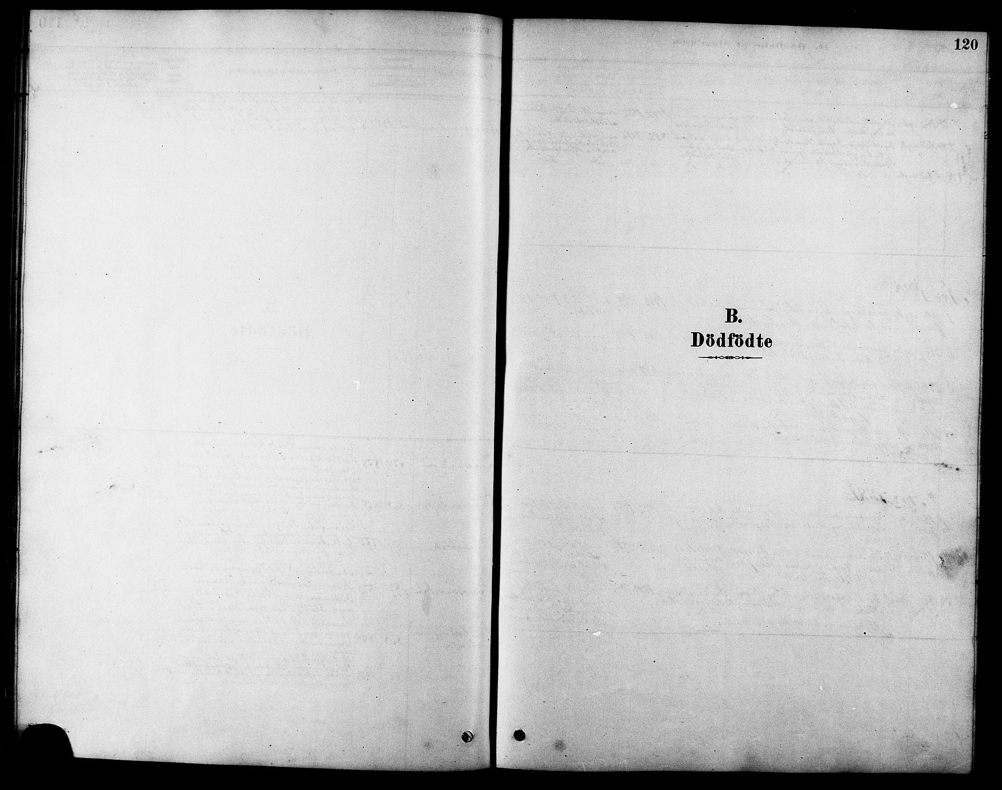 SAT, Ministerialprotokoller, klokkerbøker og fødselsregistre - Sør-Trøndelag, 616/L0423: Klokkerbok nr. 616C06, 1878-1903, s. 120