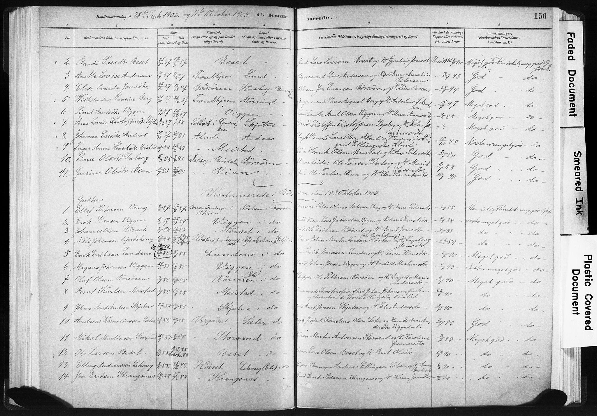 SAT, Ministerialprotokoller, klokkerbøker og fødselsregistre - Sør-Trøndelag, 665/L0773: Ministerialbok nr. 665A08, 1879-1905, s. 156