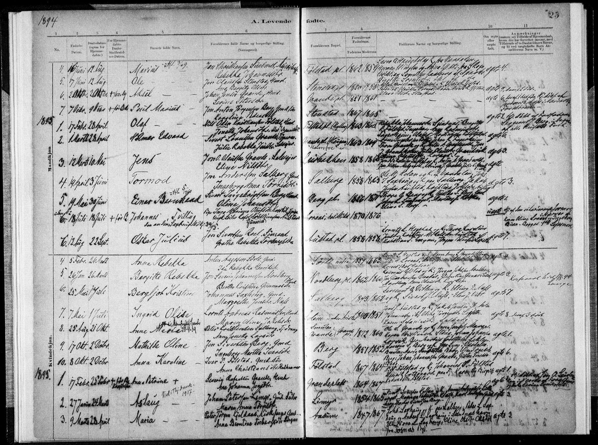 SAT, Ministerialprotokoller, klokkerbøker og fødselsregistre - Nord-Trøndelag, 731/L0309: Ministerialbok nr. 731A01, 1879-1918, s. 25