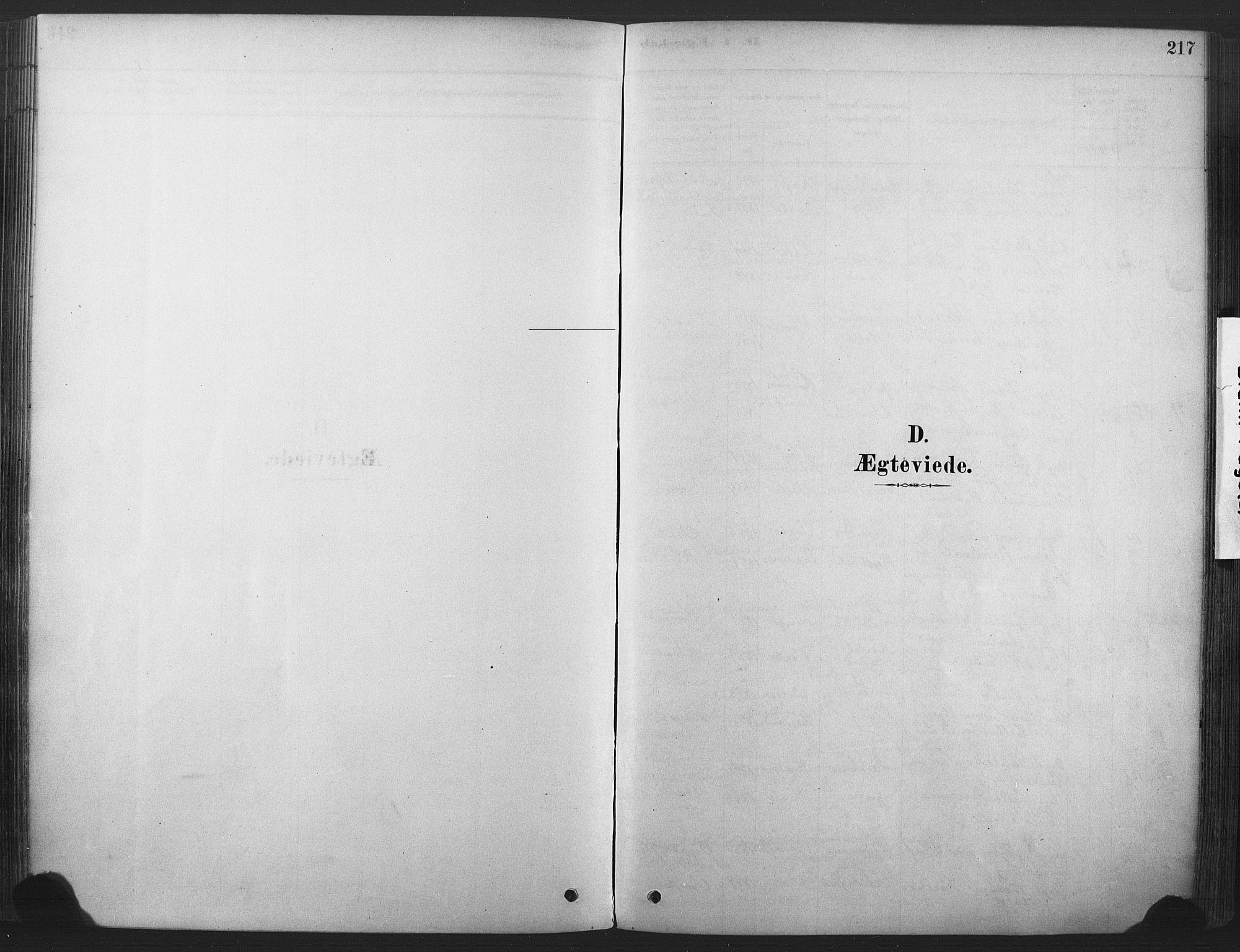 SAKO, Våle kirkebøker, F/Fa/L0011: Ministerialbok nr. I 11, 1878-1906, s. 217