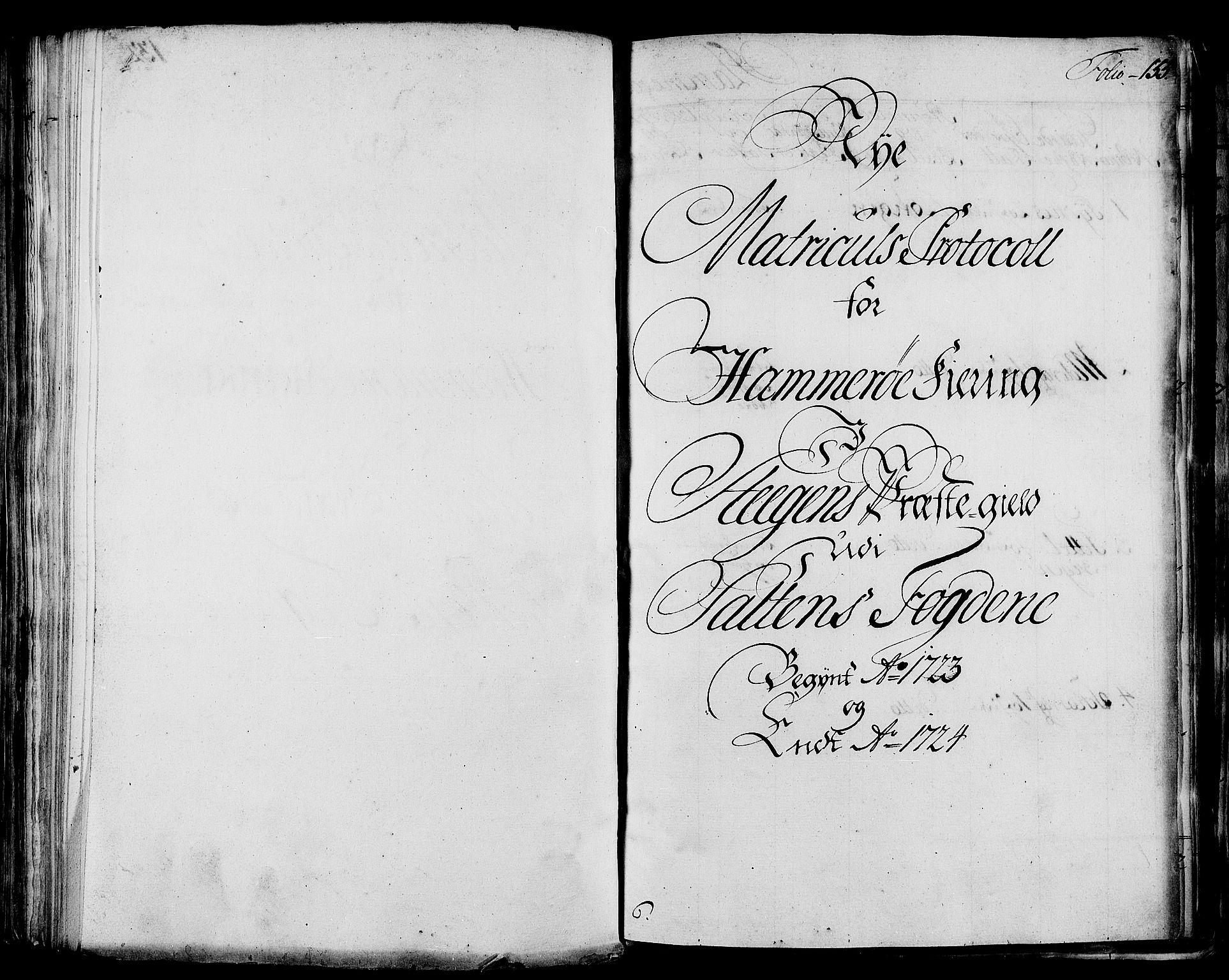 RA, Rentekammeret inntil 1814, Realistisk ordnet avdeling, N/Nb/Nbf/L0172: Salten eksaminasjonsprotokoll, 1723, s. 132b-133a