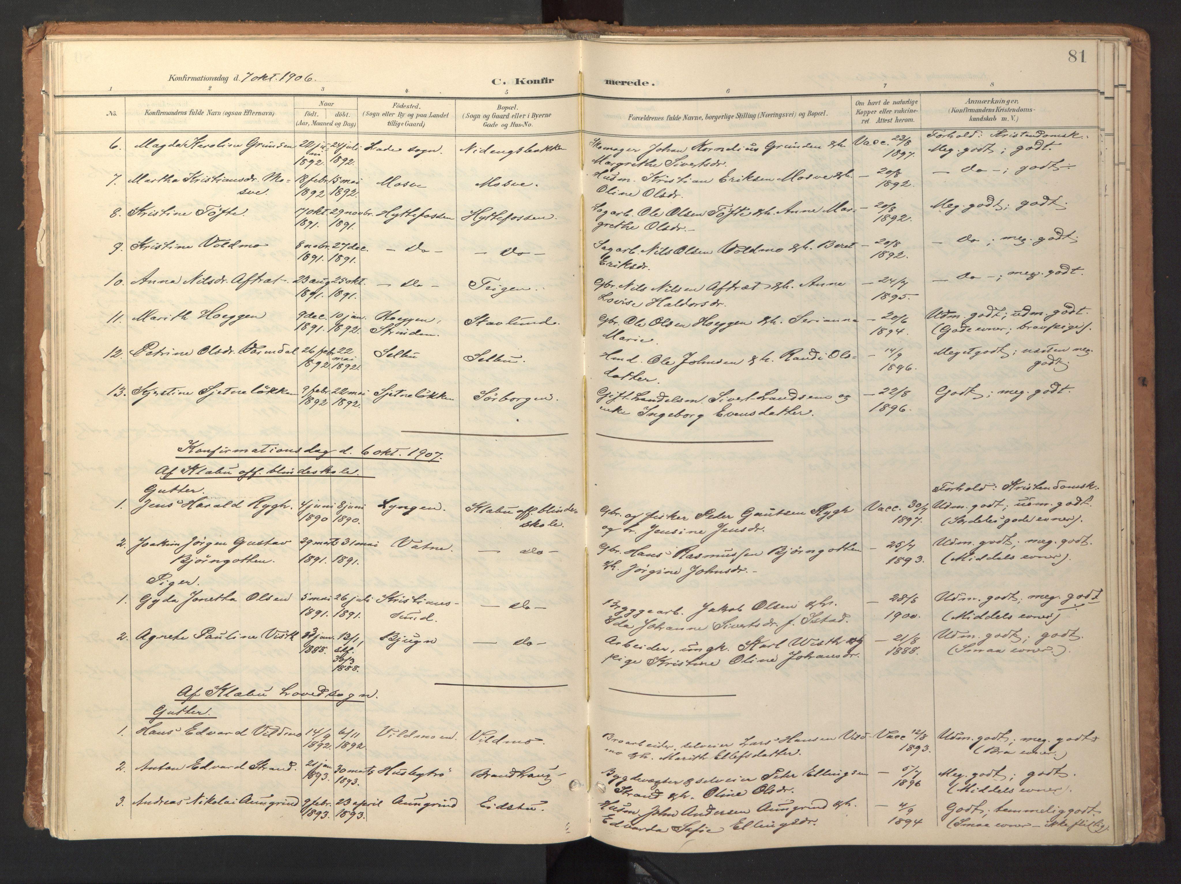 SAT, Ministerialprotokoller, klokkerbøker og fødselsregistre - Sør-Trøndelag, 618/L0448: Ministerialbok nr. 618A11, 1898-1916, s. 81