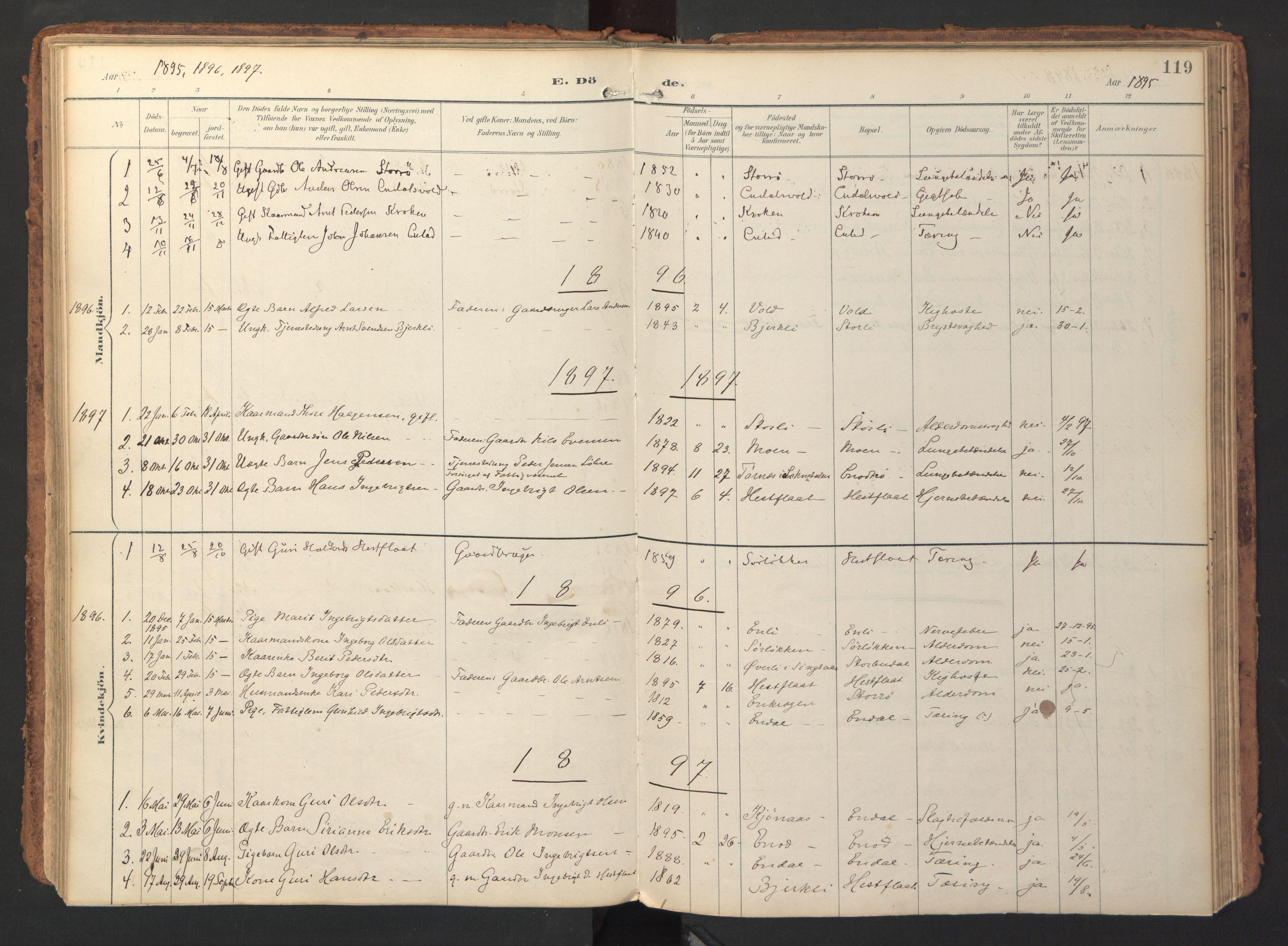 SAT, Ministerialprotokoller, klokkerbøker og fødselsregistre - Sør-Trøndelag, 690/L1050: Ministerialbok nr. 690A01, 1889-1929, s. 119