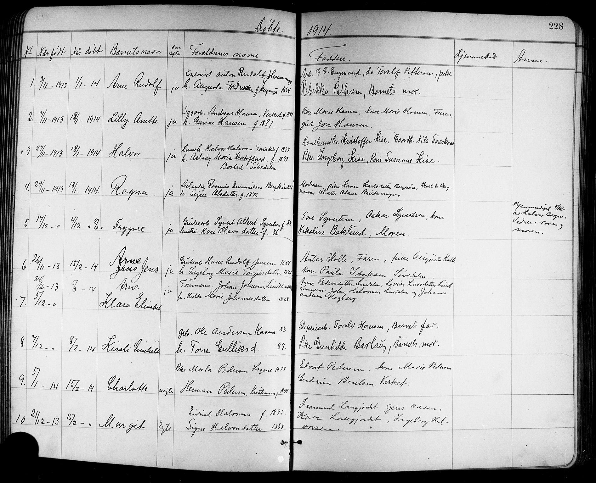 SAKO, Holla kirkebøker, G/Ga/L0005: Klokkerbok nr. I 5, 1891-1917, s. 228