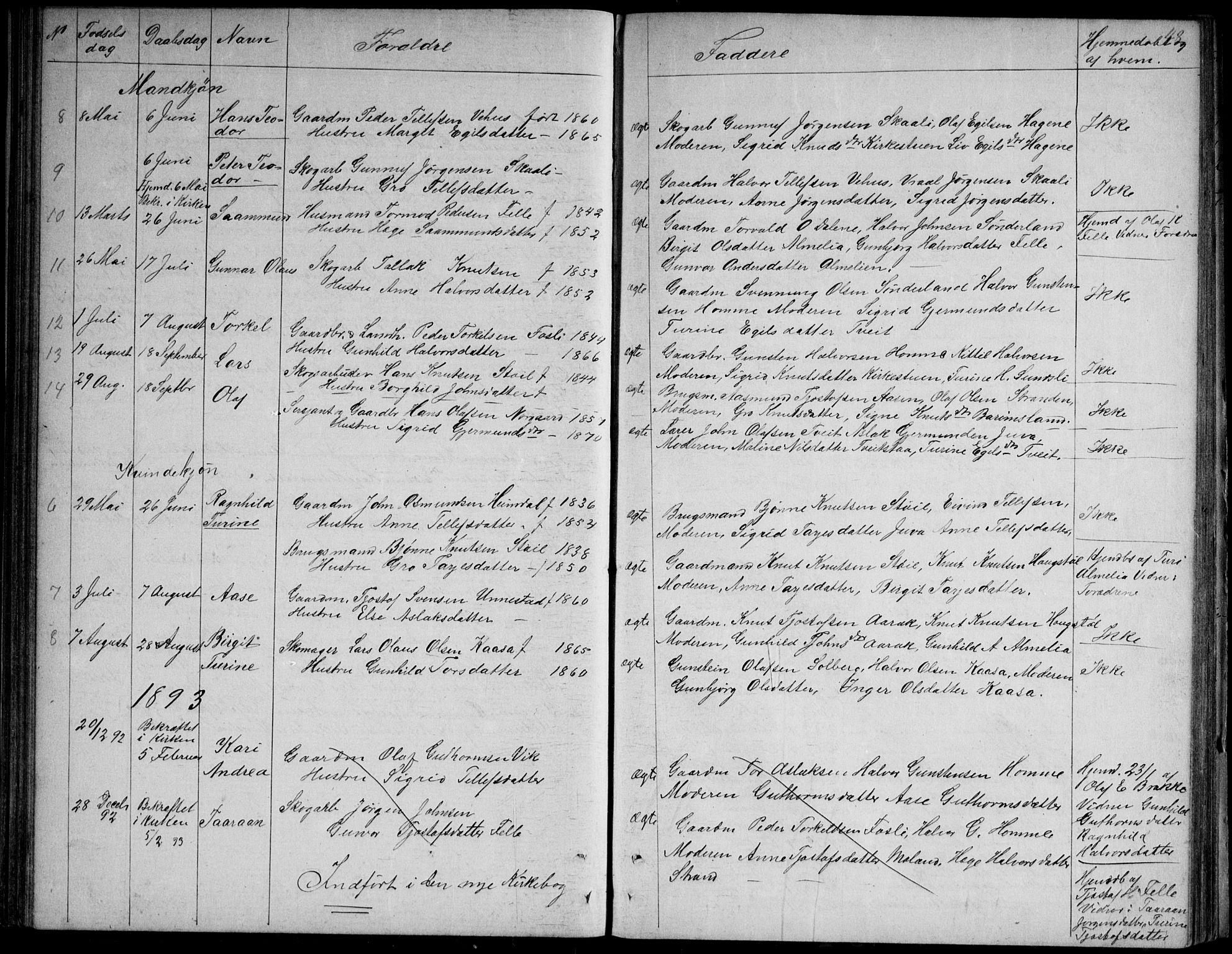 SAKO, Nissedal kirkebøker, G/Gb/L0002: Klokkerbok nr. II 2, 1863-1892, s. 48