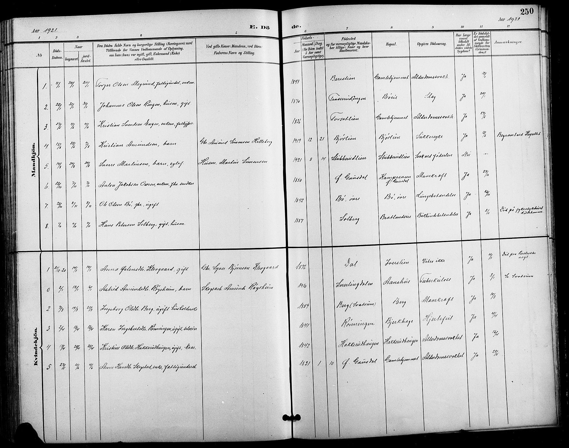 SAH, Vestre Gausdal prestekontor, Klokkerbok nr. 3, 1896-1925, s. 250