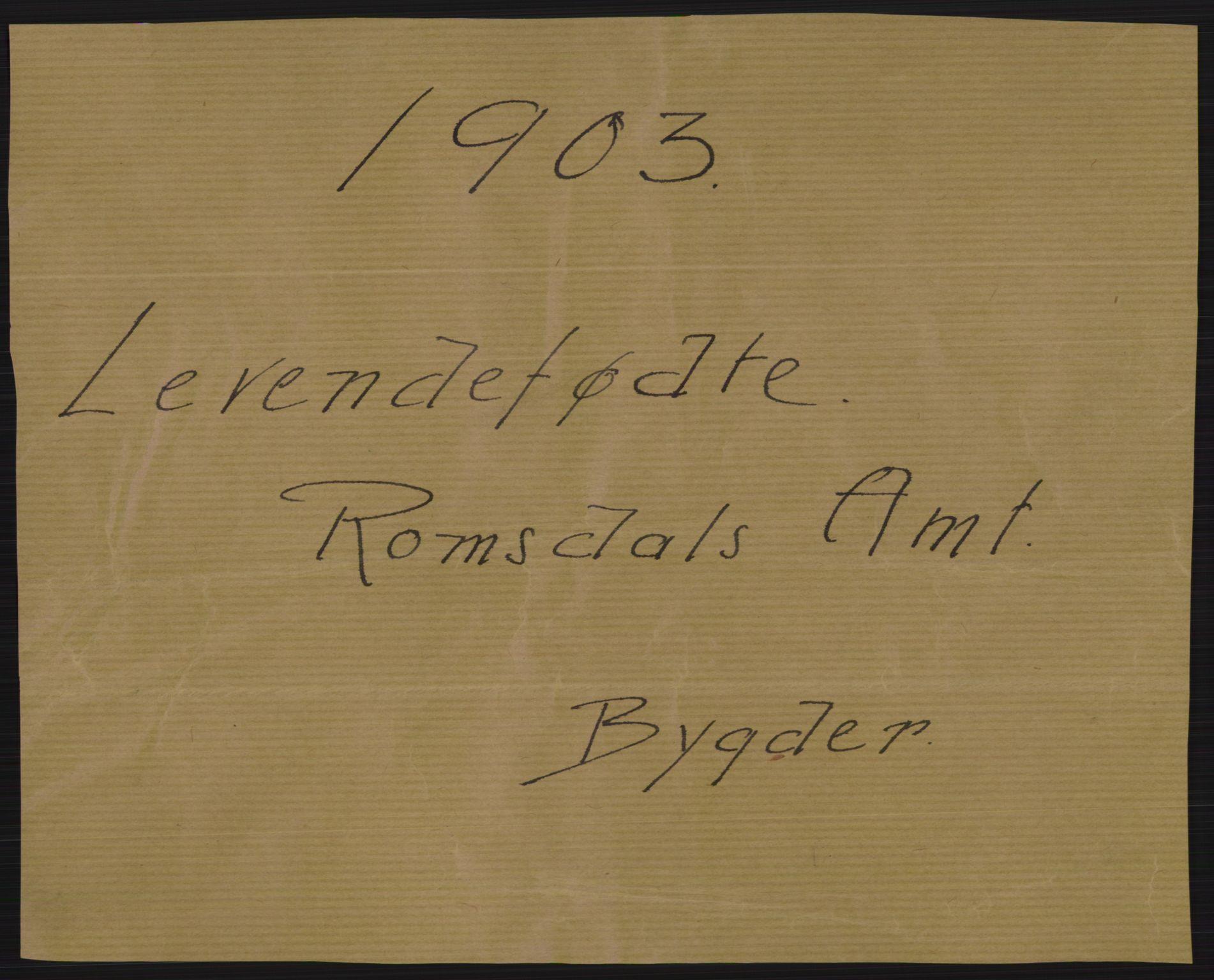 RA, Statistisk sentralbyrå, Sosiodemografiske emner, Befolkning, D/Df/Dfa/Dfaa/L0016: Romsdal amt: Fødte, gifte, døde., 1903