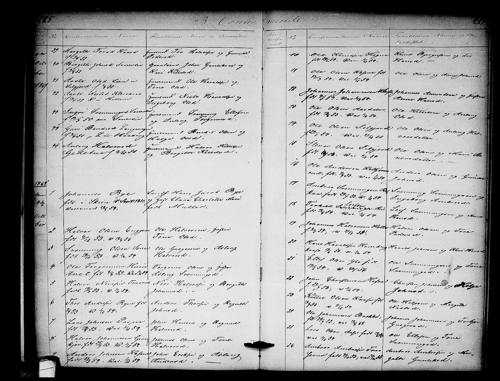 SAKO, Heddal kirkebøker, G/Ga/L0001: Klokkerbok nr. I 1, 1866-1878, s. 228-229