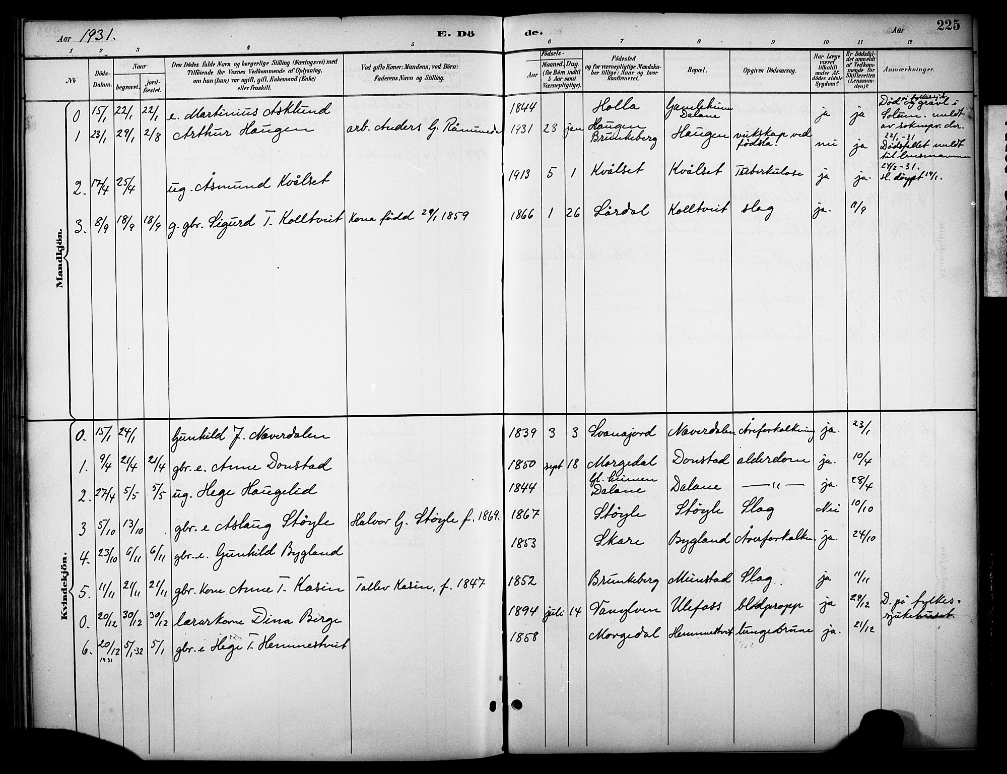 SAKO, Kviteseid kirkebøker, G/Gb/L0003: Klokkerbok nr. II 3, 1893-1933, s. 225
