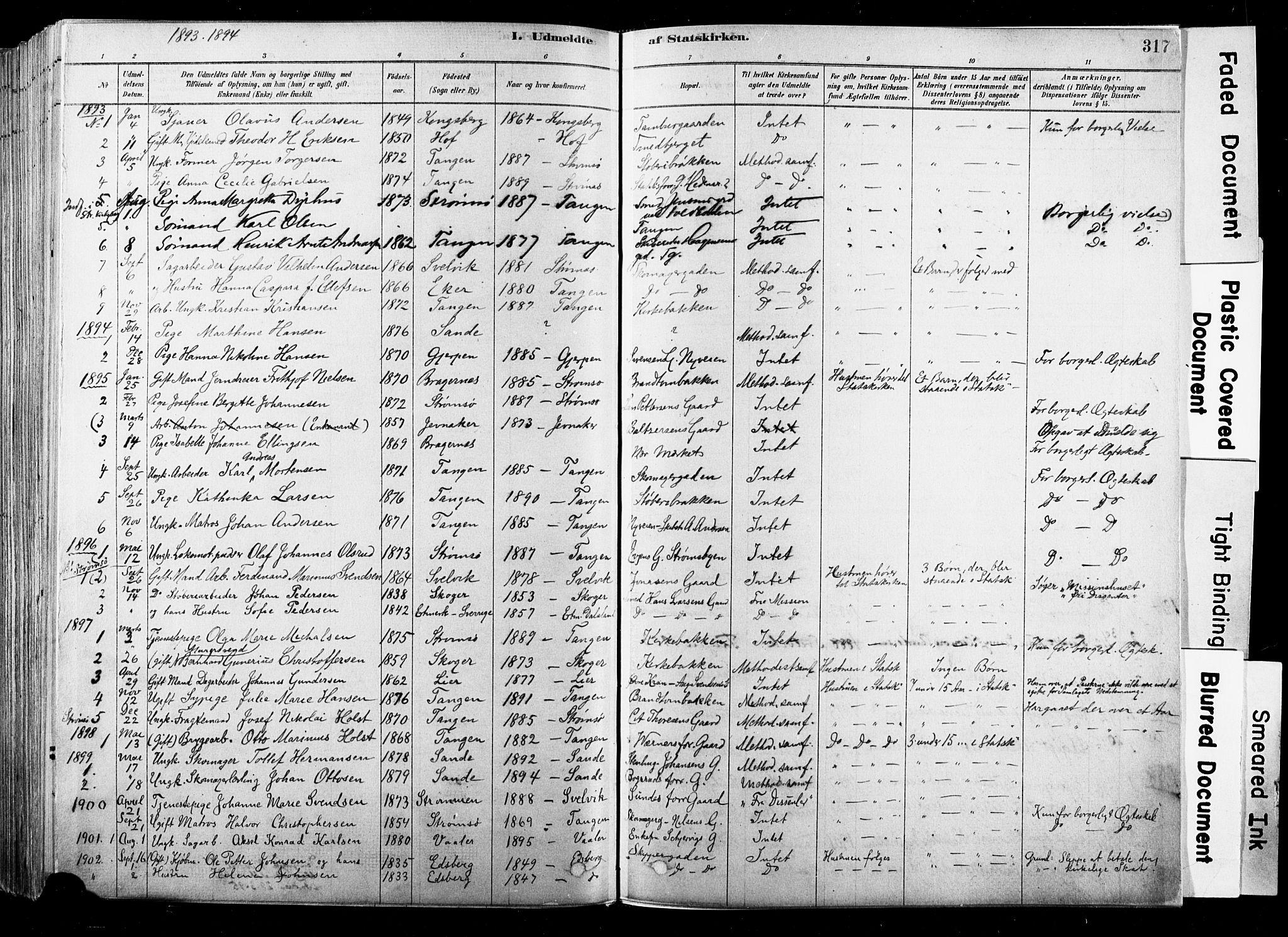 SAKO, Strømsø kirkebøker, F/Fb/L0006: Ministerialbok nr. II 6, 1879-1910, s. 317